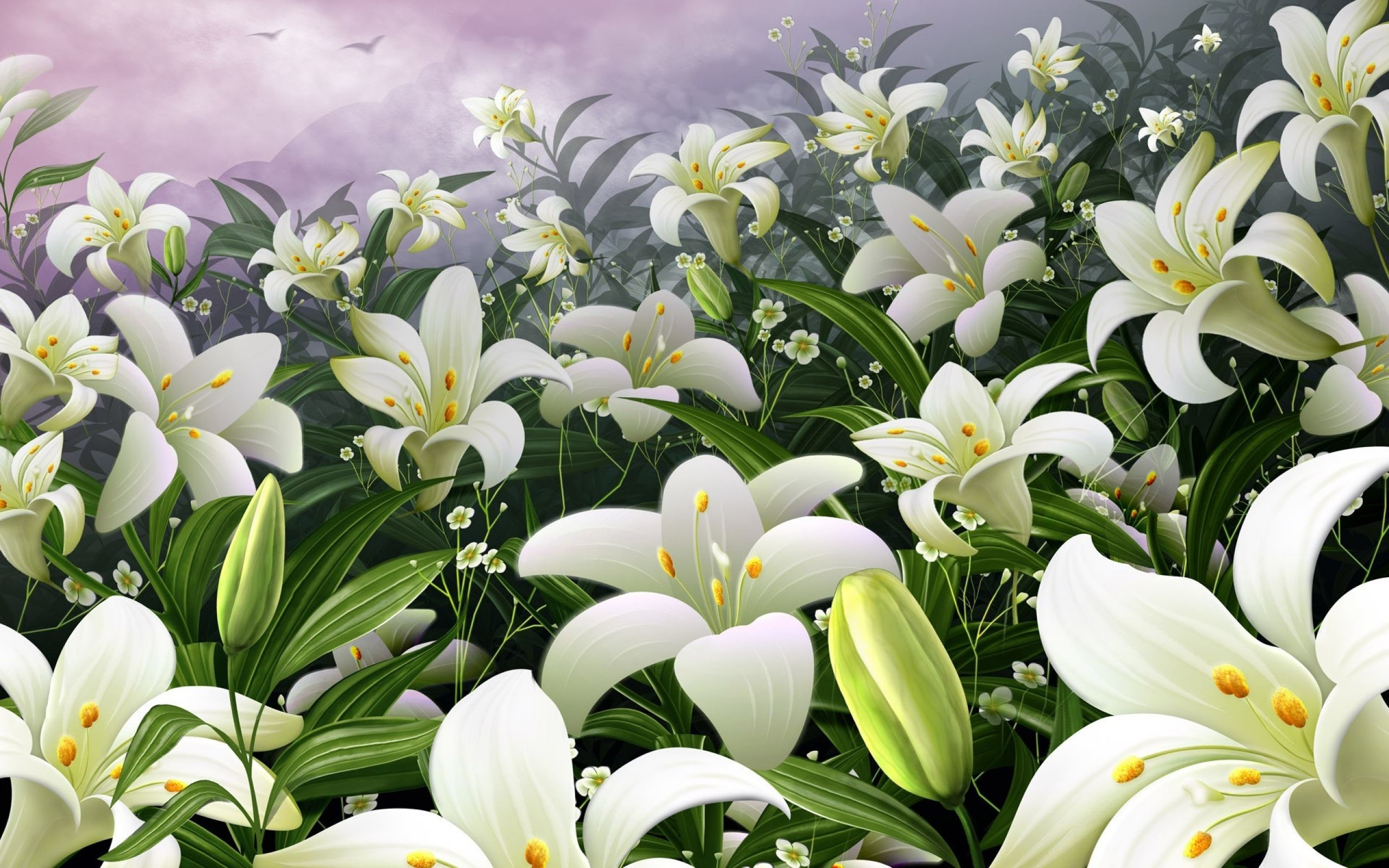 Lilies wallpaper 62 images 2560x1600 white lily flower wallpaper for pc full hd pictures izmirmasajfo