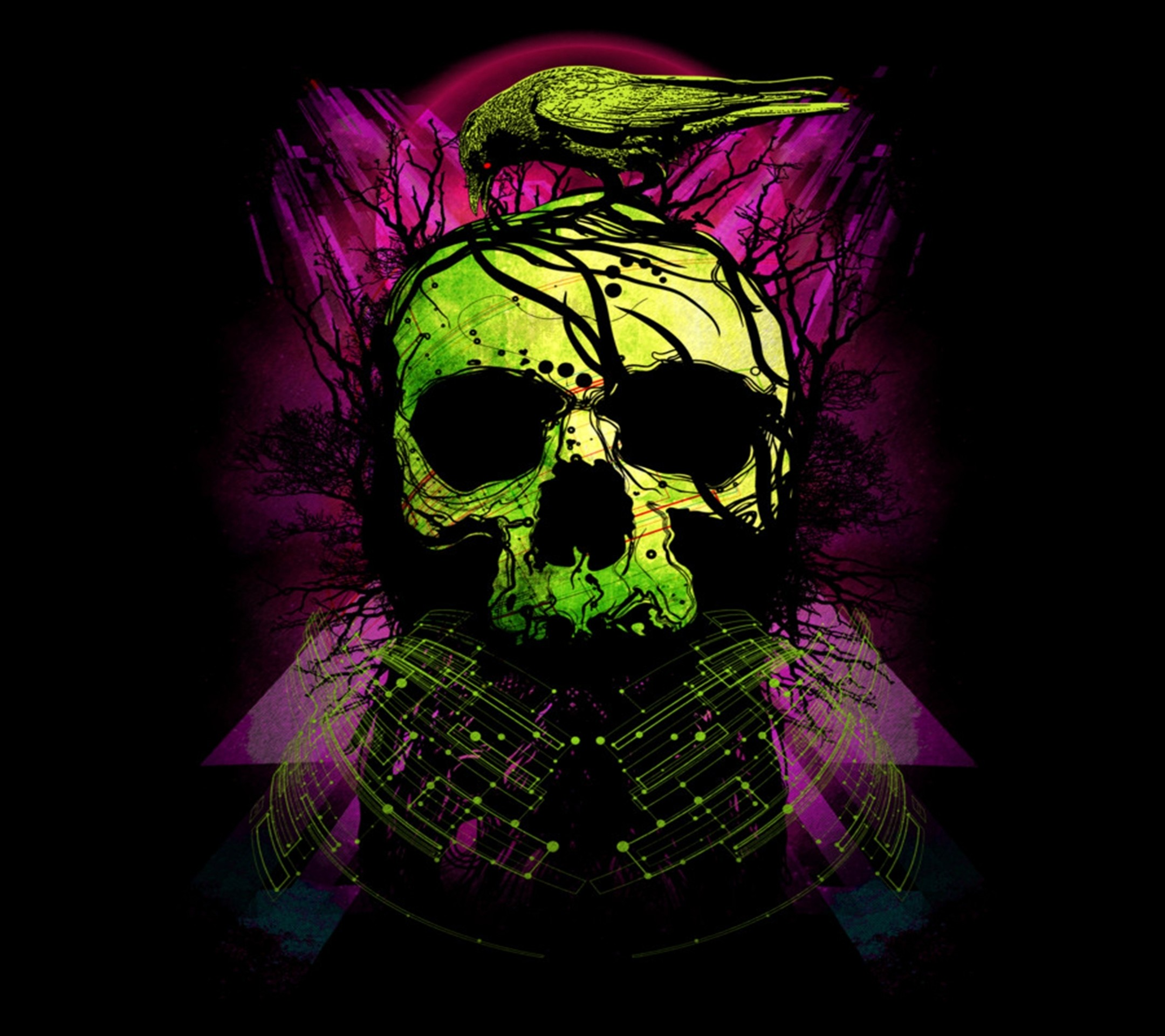 Pink Skull Wallpaper (50+ Images