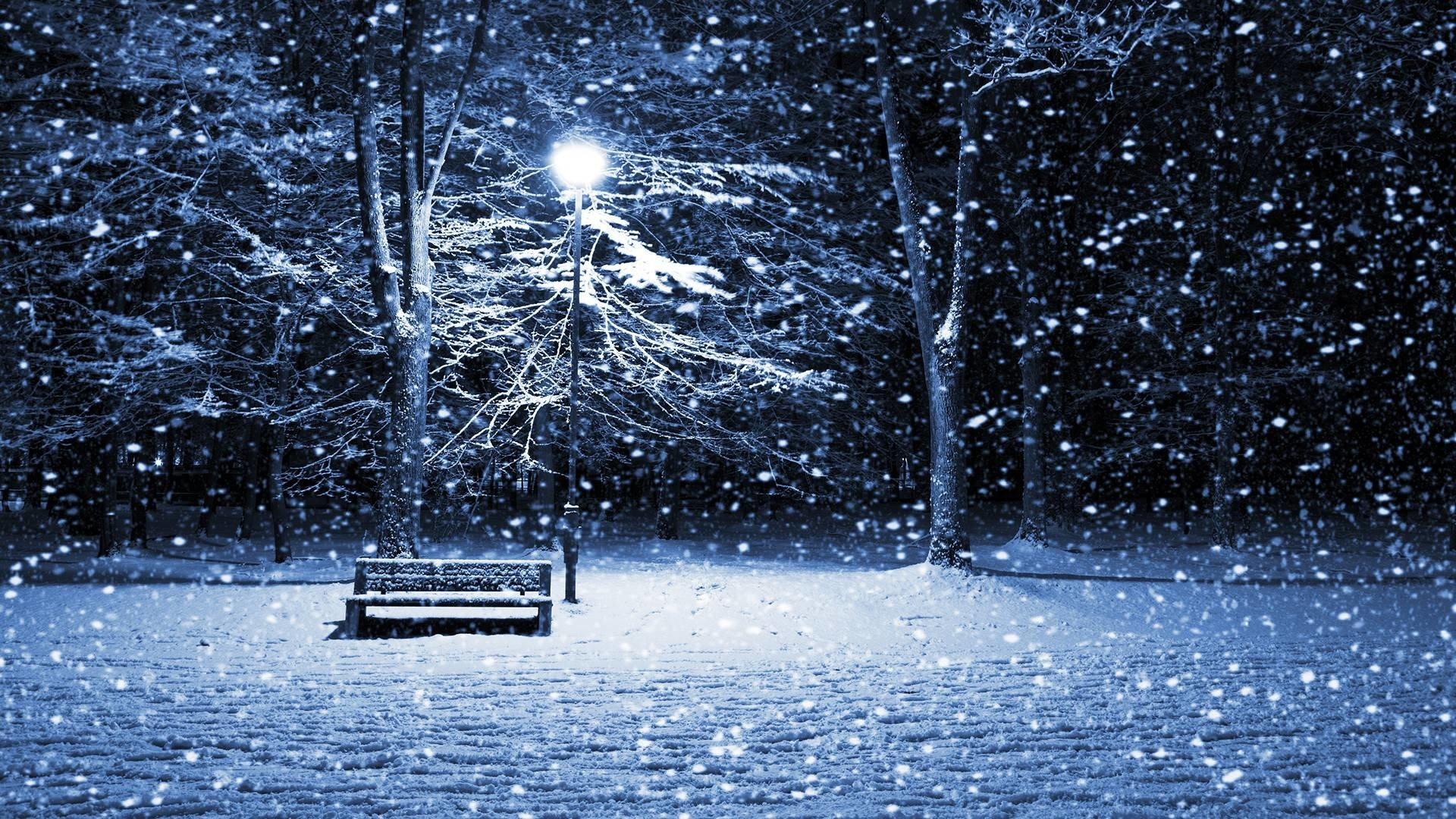 Winter Snowfall HD desktop wallpaper High Definition Mobile ...