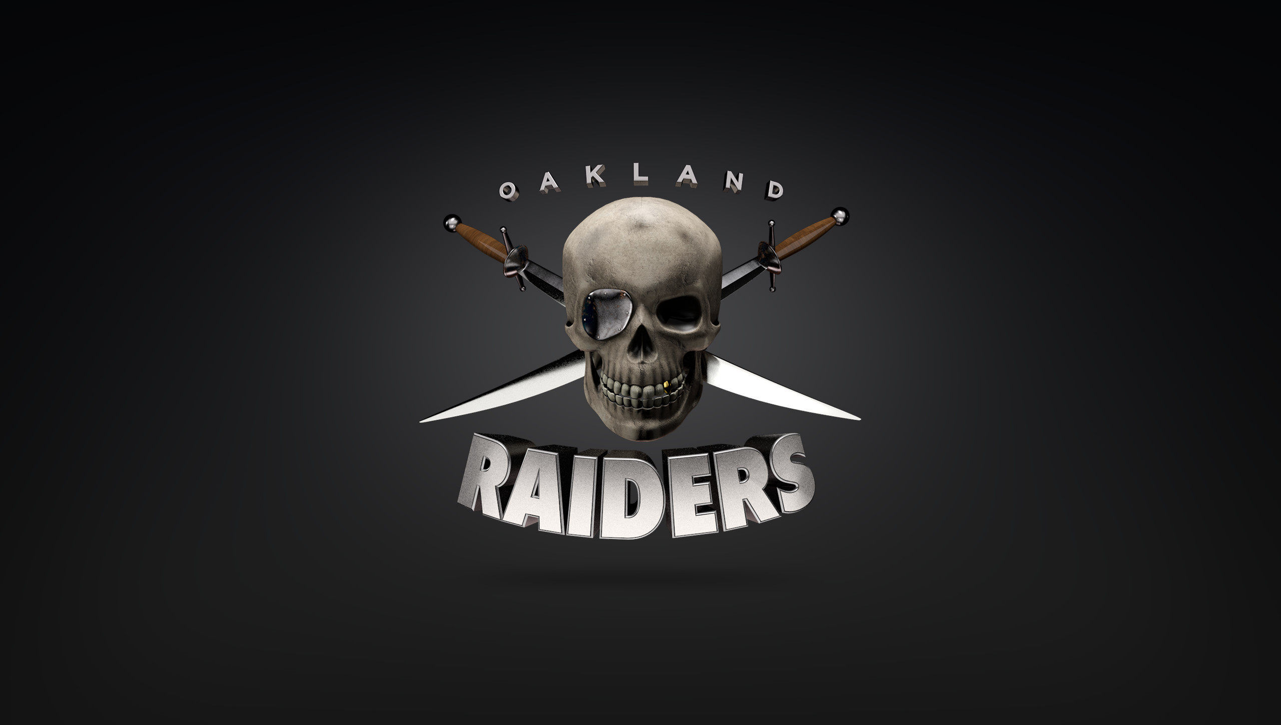 2560x1449 raiders logo wallpapers hd - photo #7. JuJa Italia