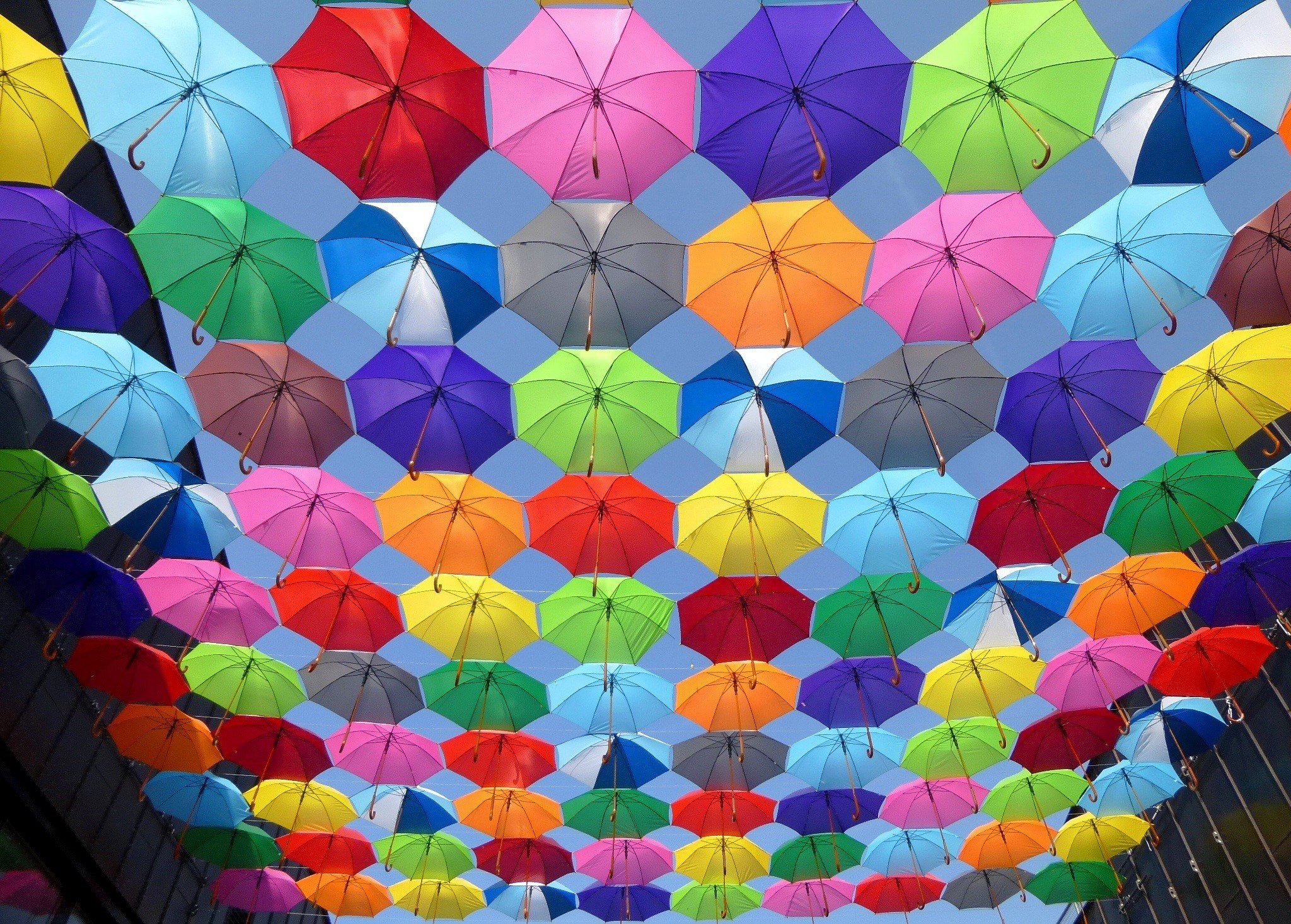 2048x1466 Yellow Blue Red Pink Purple Green Multicolored Open Umbrellas Hanging on  Strings Under Blue Sky