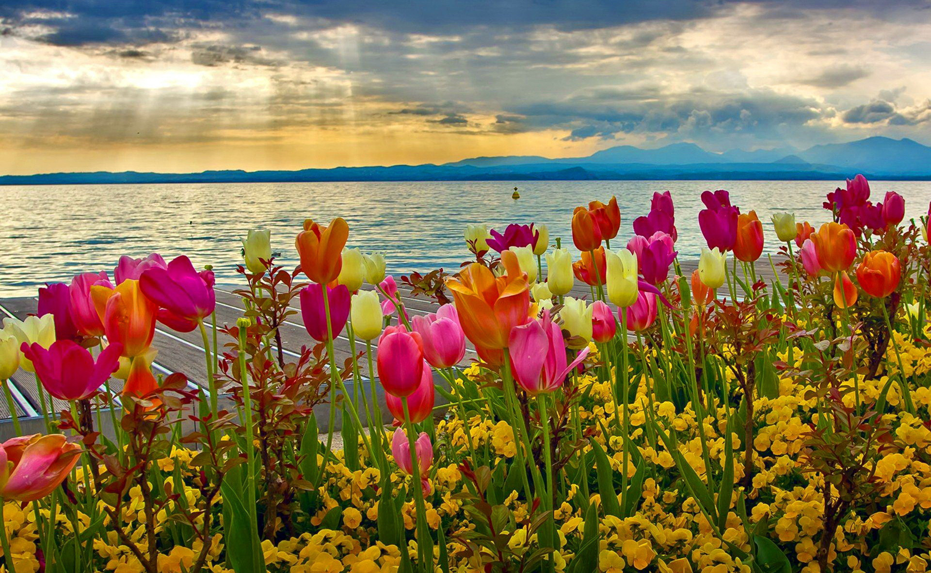 Spring Desktop Backgrounds 72 Images