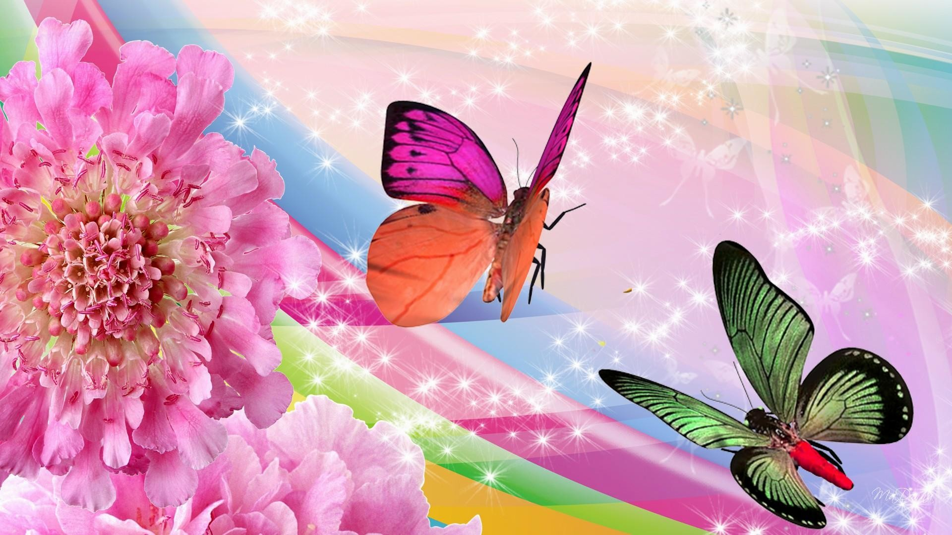 1920x1080 4. live-butterfly-wallpaper-HD4-600x338