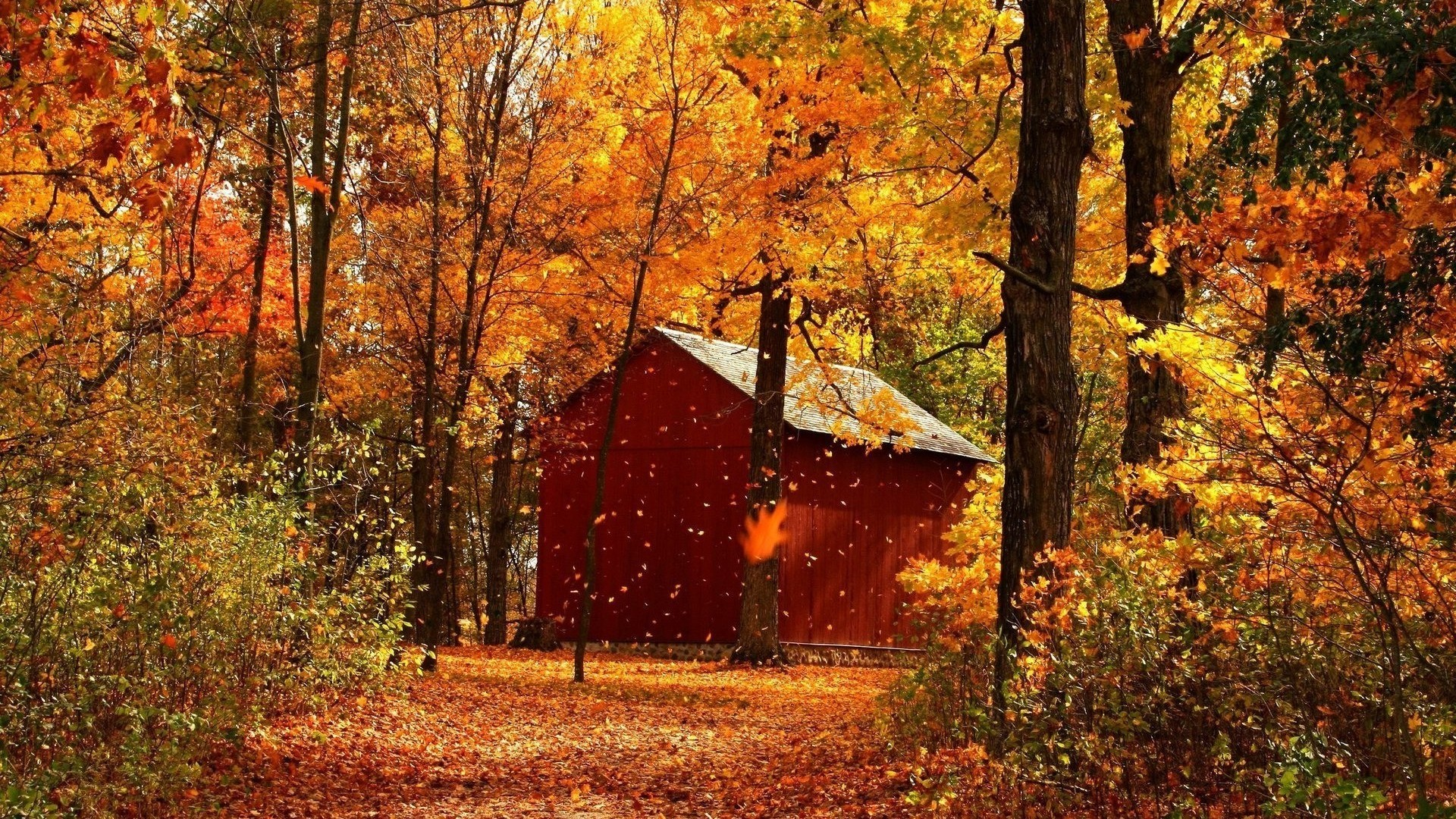 1920x1080 Download Red barn in autumn forest wallpaper 928.