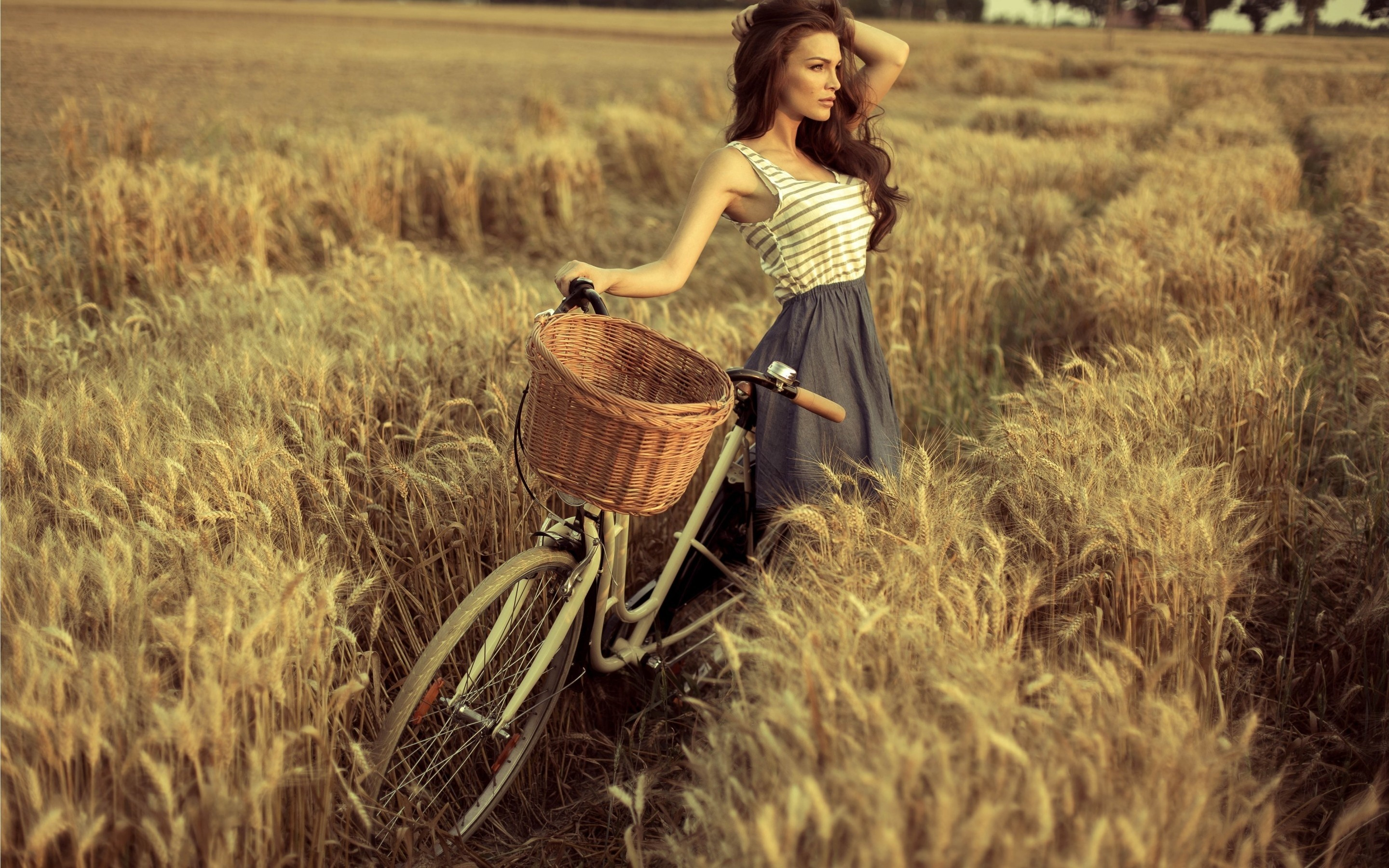 2880x1800 bicycle, girl, dress, field, brunette