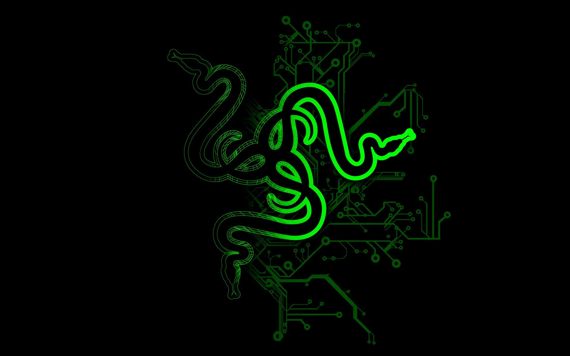 1920x1200 snake, Abstract, Razer, Logo Wallpapers HD / Desktop and Mobile Backgrounds