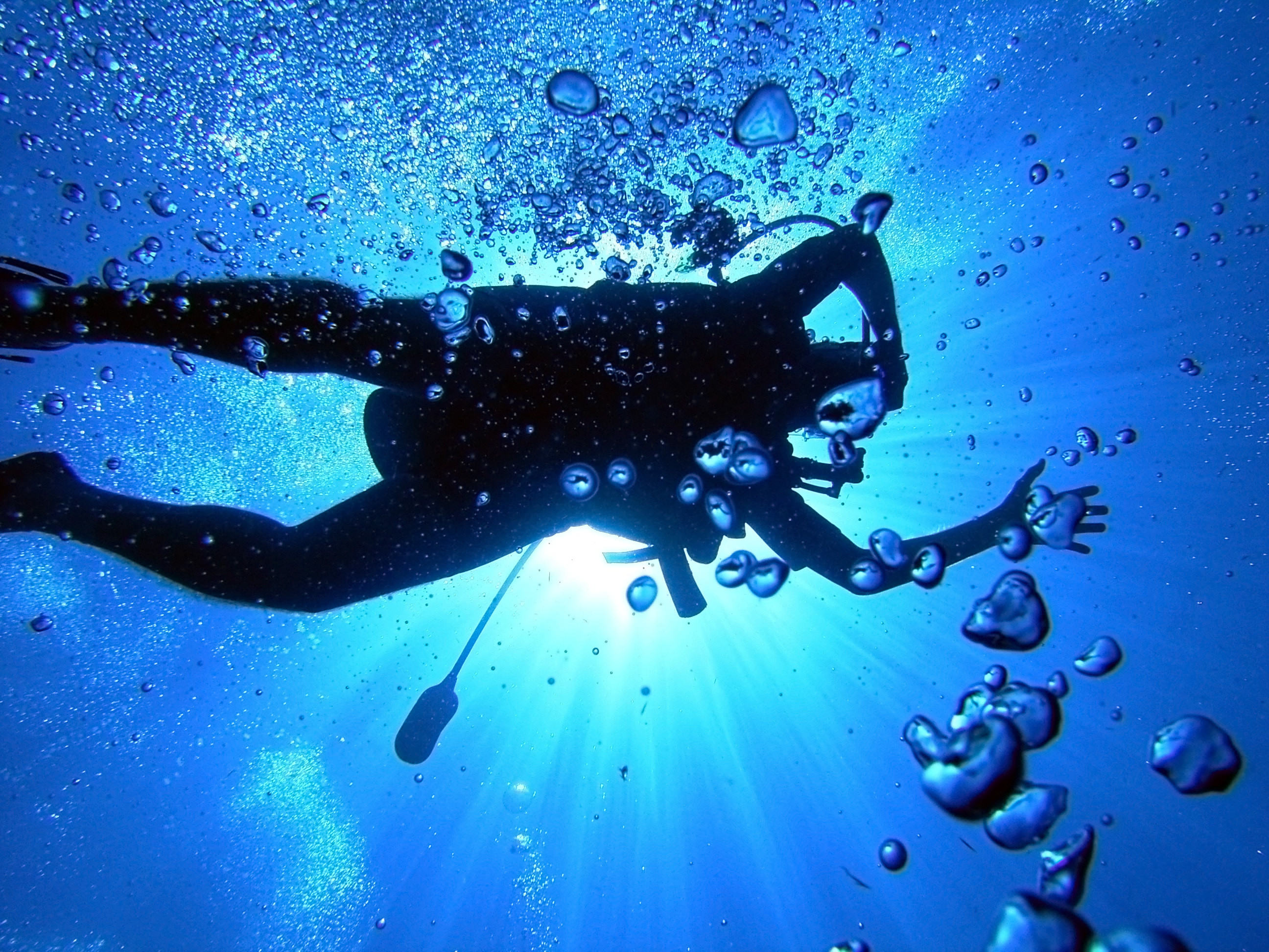 2592x1944 Scuba diving HD Wallpaper | Background Image |  | ID:165146 -  Wallpaper Abyss