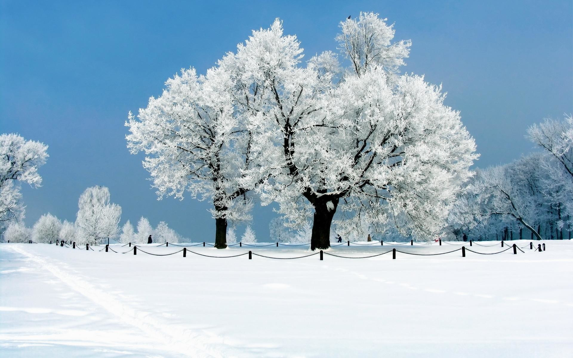 1920x1200 wallpaper.wiki-Snow-Desktop-Backgrounds-PIC-WPB0076