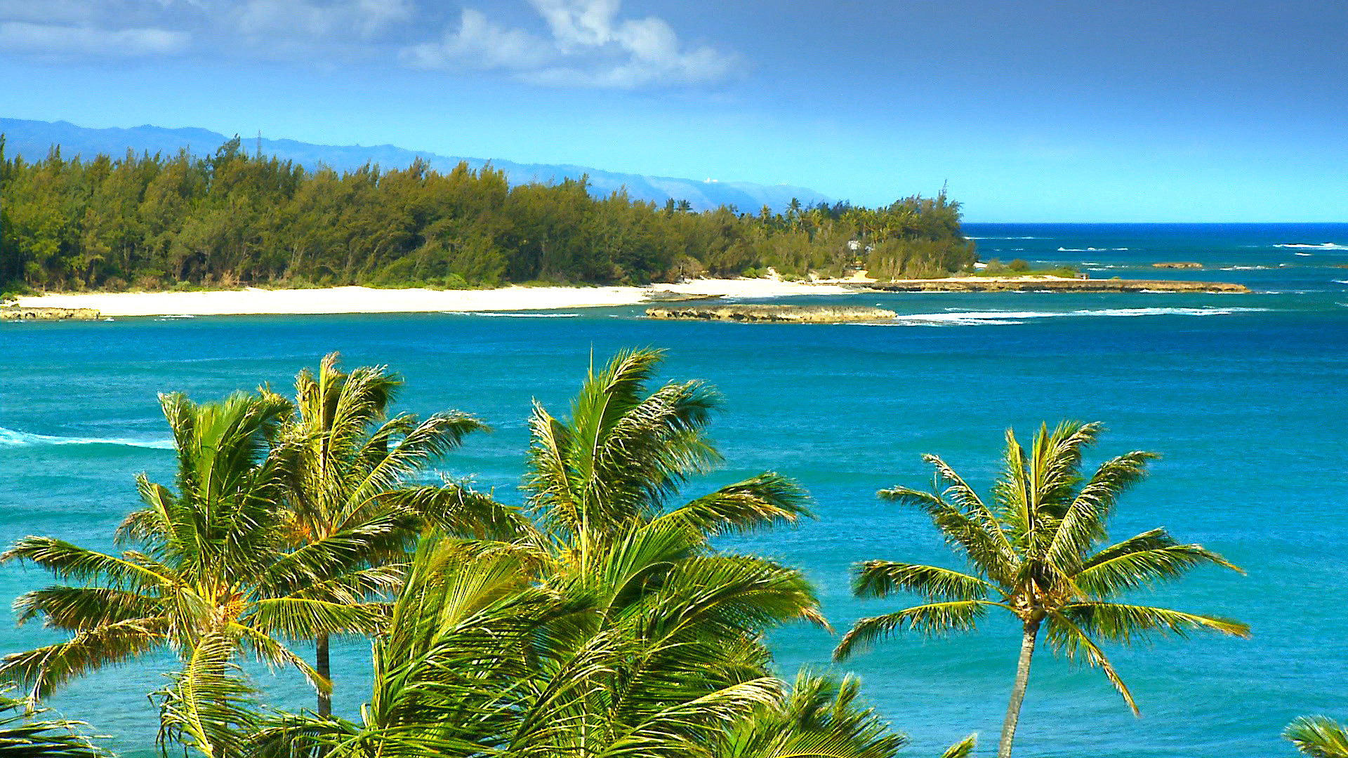 1920x1080 SEE The Most Beautiful Hawaii Beaches HD Blu-Ray Video DVD: The #1