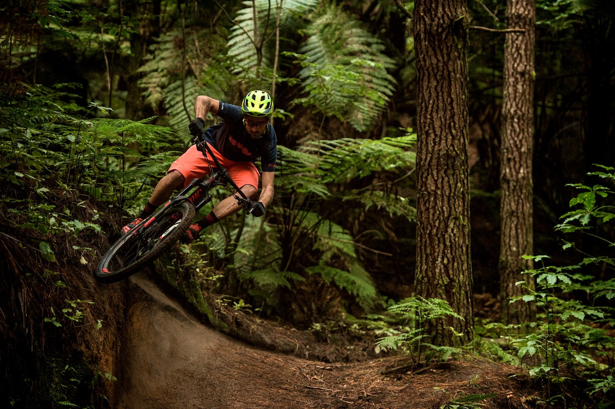 Downhill Mountain Bike Wallpaper (67+ images)