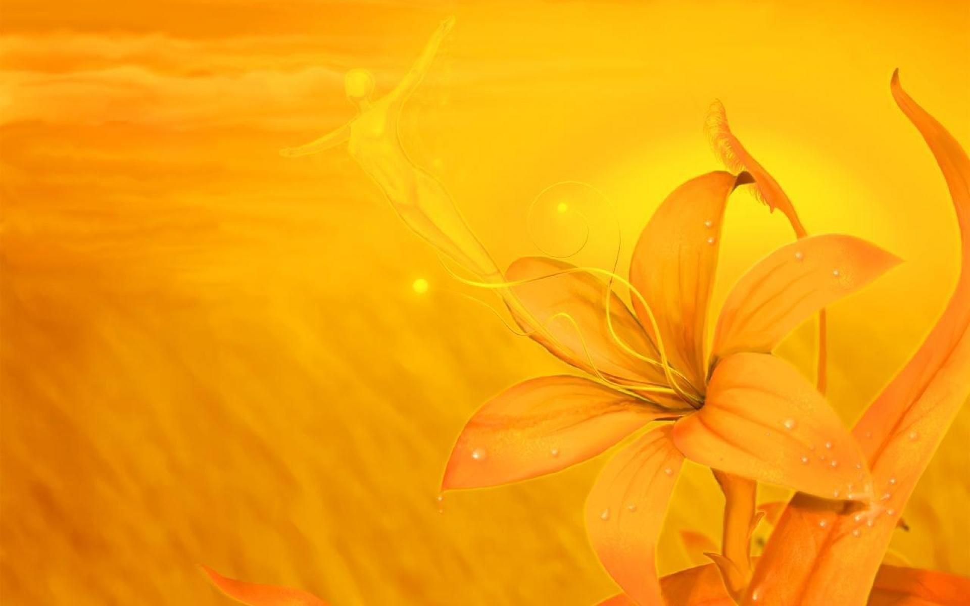 Yellow Background Wallpaper 48 Images