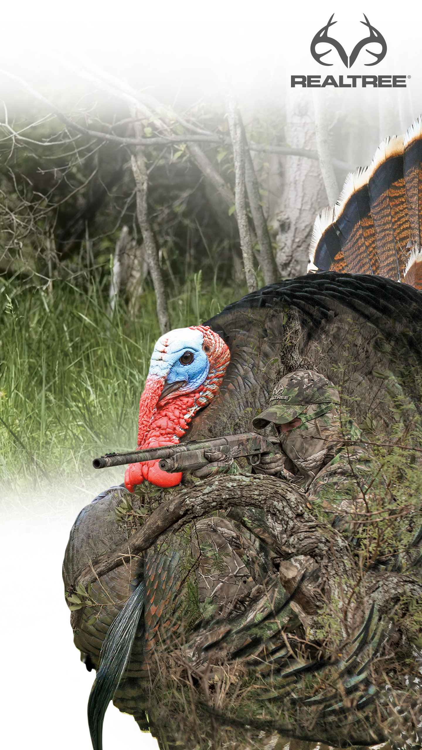 Spring Turkey Hunting Wallpaper 58 Images