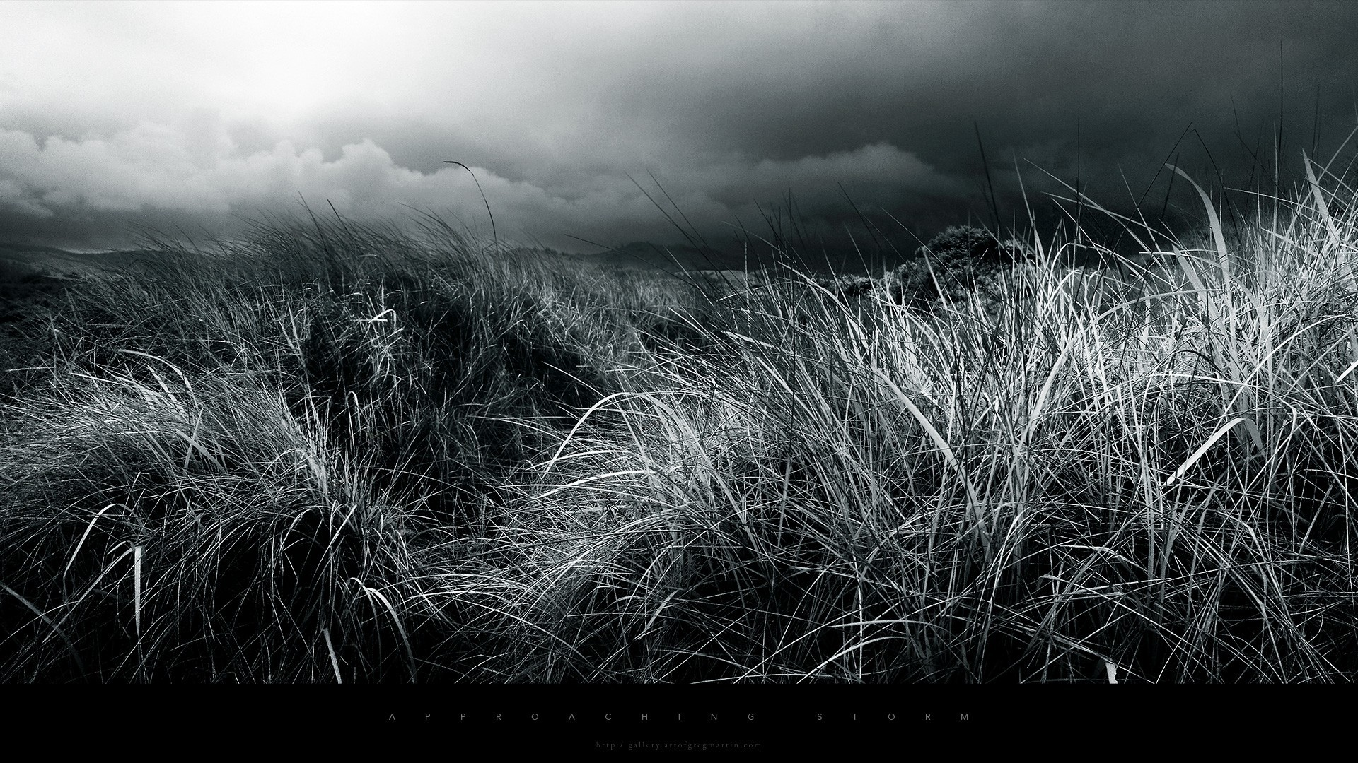Black and white desktop backgrounds 80 images - White background 1920x1080 ...