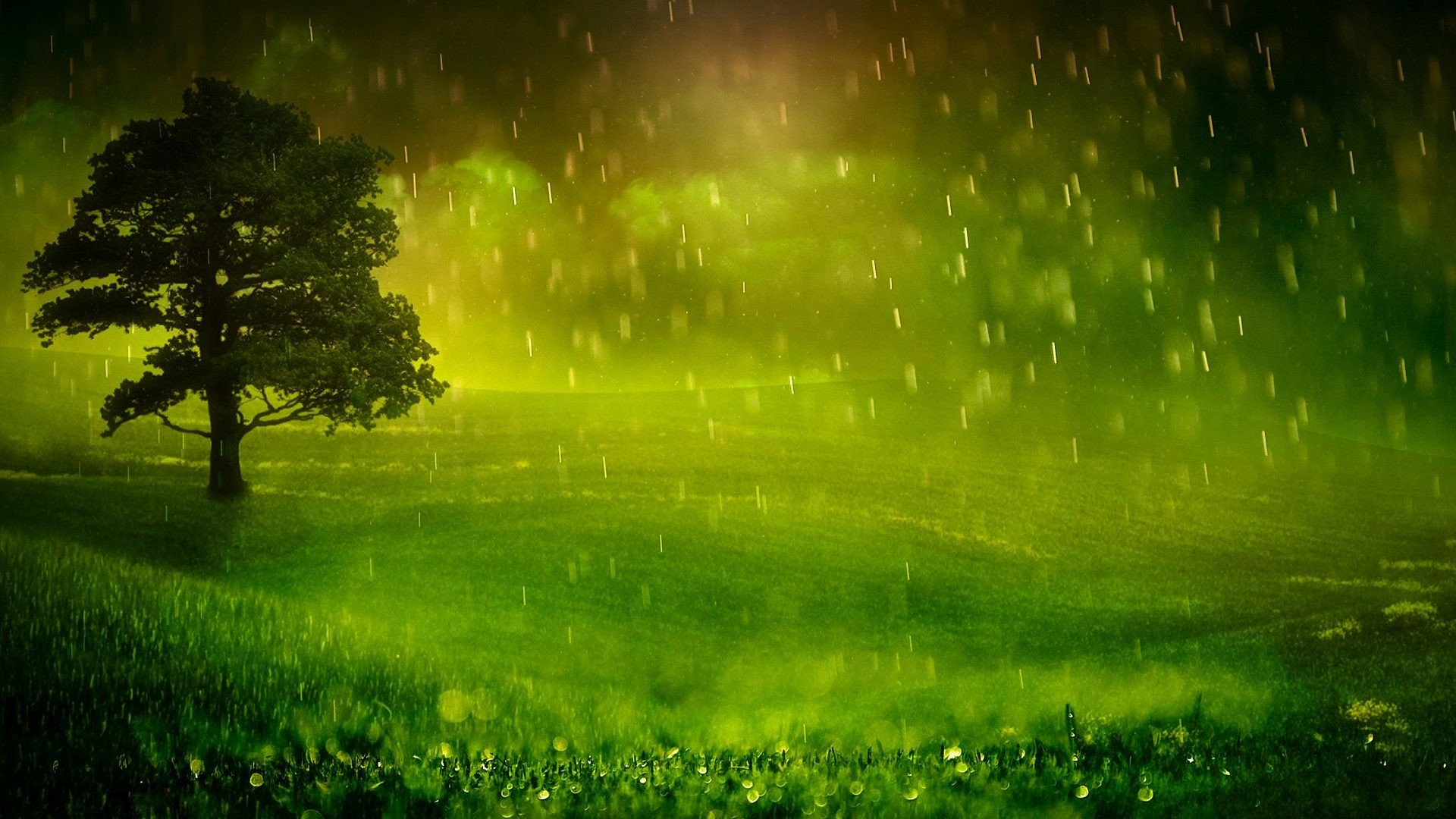1920x1080 Storm Green Rain Pretty Peaceful Tree Rainy Stormy Field Water Splendor  Clouds Lovely Beauty Drops Nature Sky Beautiful Trees Landscape Grass Rice  Fields ...