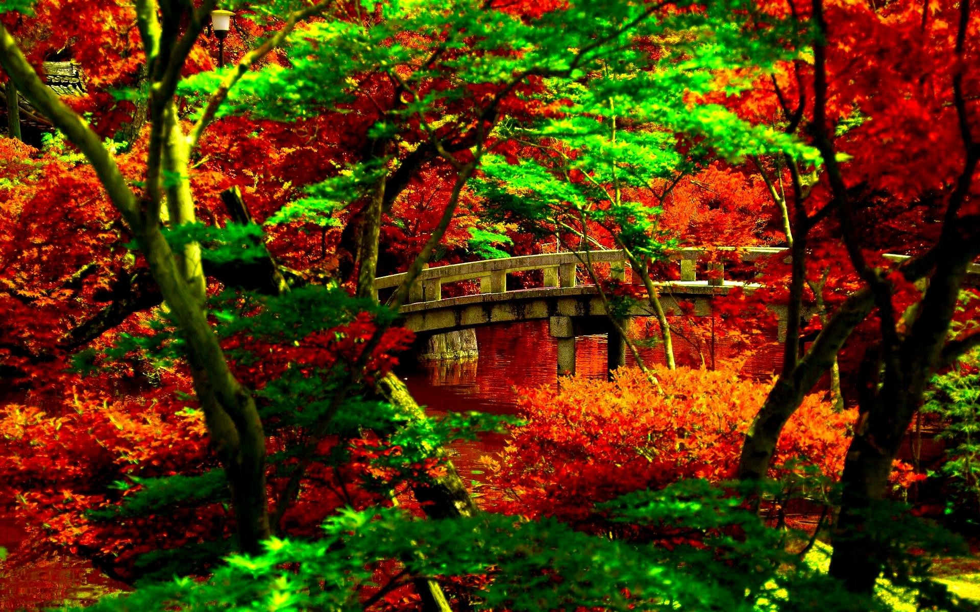 Japanese Garden Wallpapers: Japanese Desktop Wallpaper (70+ Images