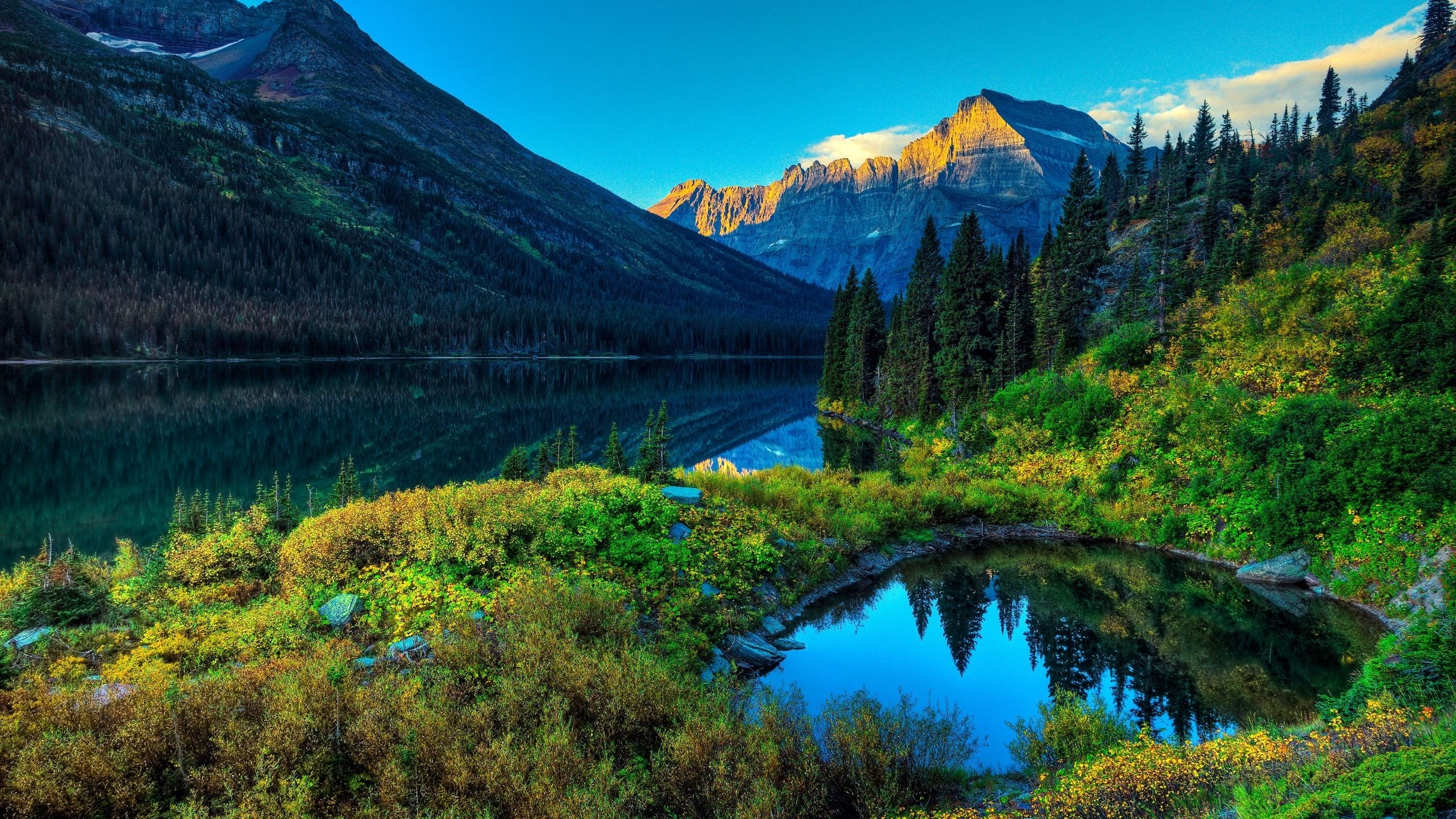 full hd nature wallpapers 67 images