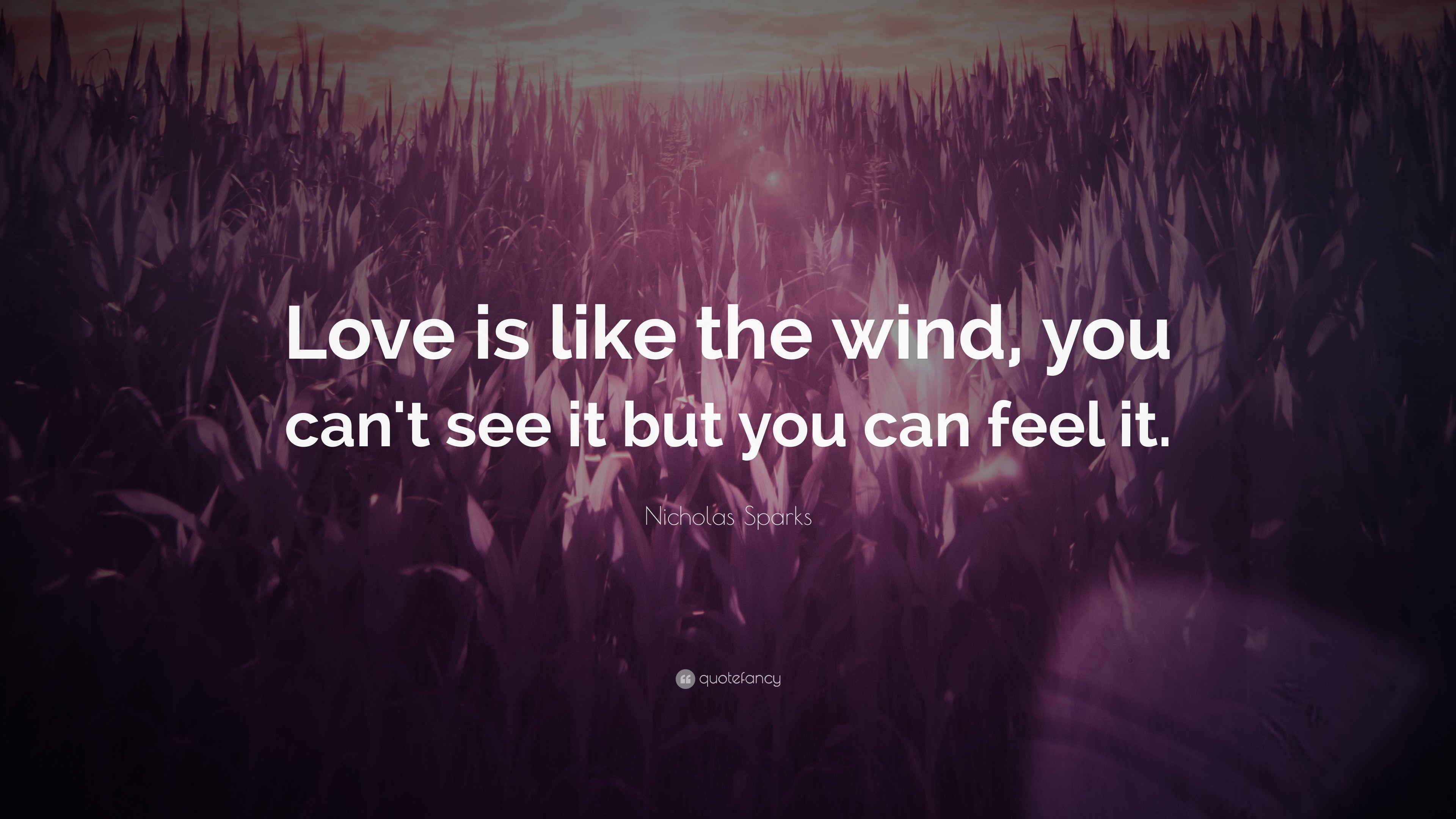"3840x2160 Love Quotes: ""Love is like the wind, you can't see it"