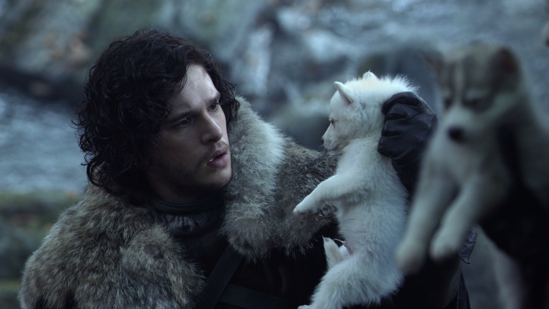 1920x1080 Jon Snow finds Ghost as a pup.