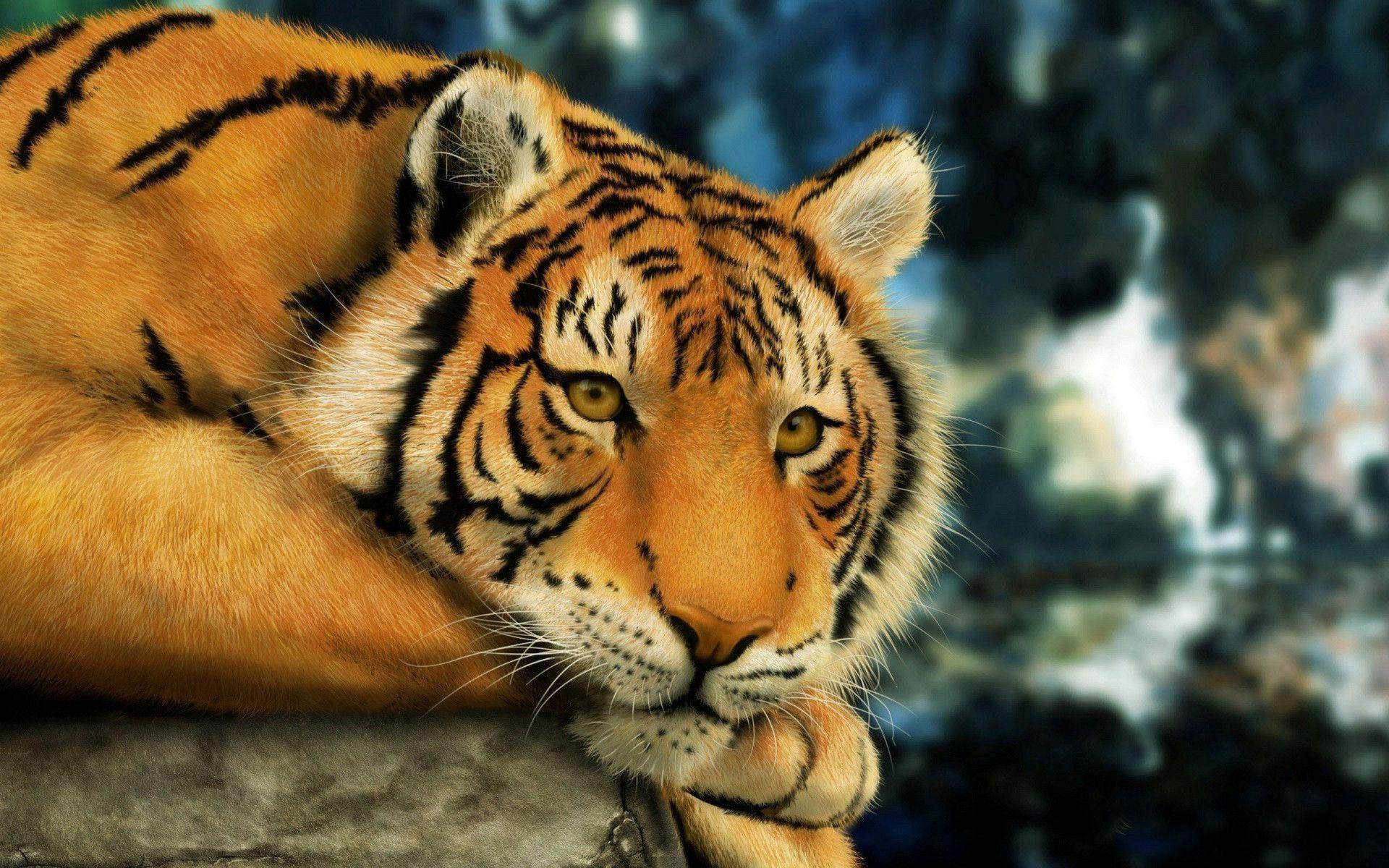 detroit tigers desktop wallpaper 1920x1080 (56+ images)