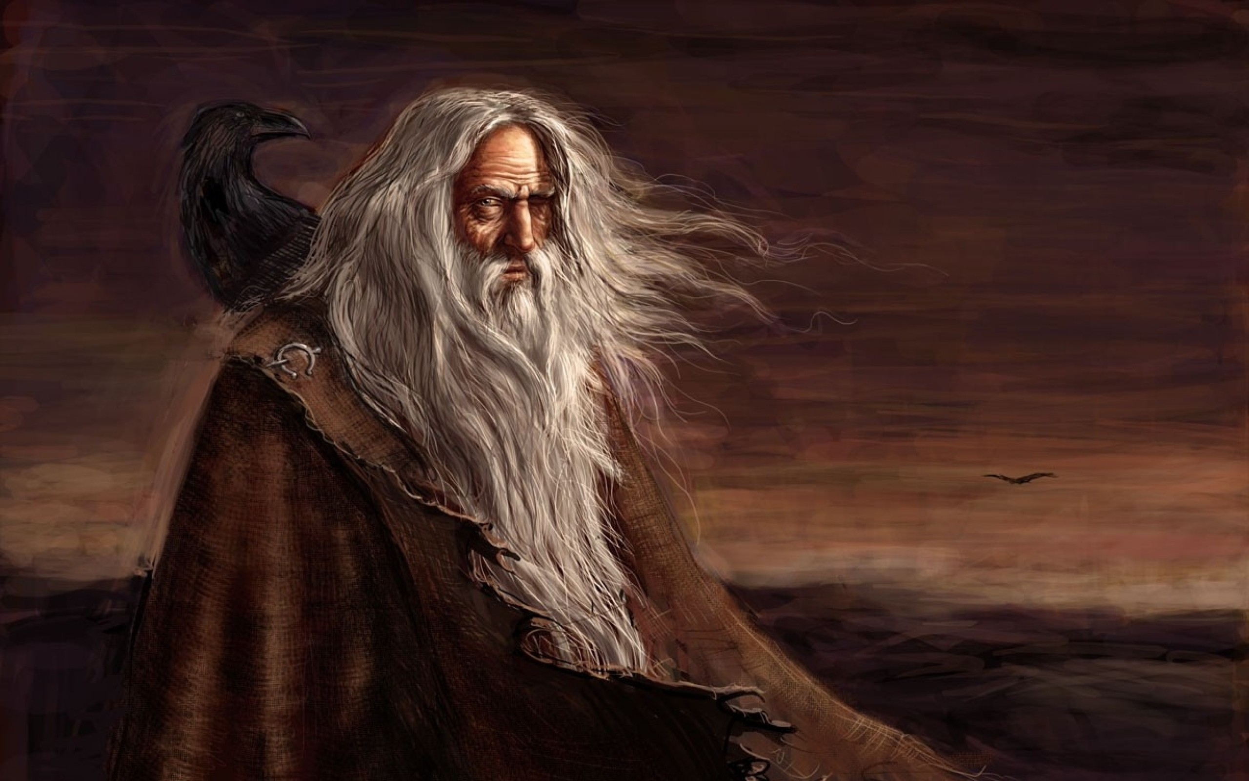 2560x1600 fantasy art odin mythology ravens gods paganism Wallpaper HD