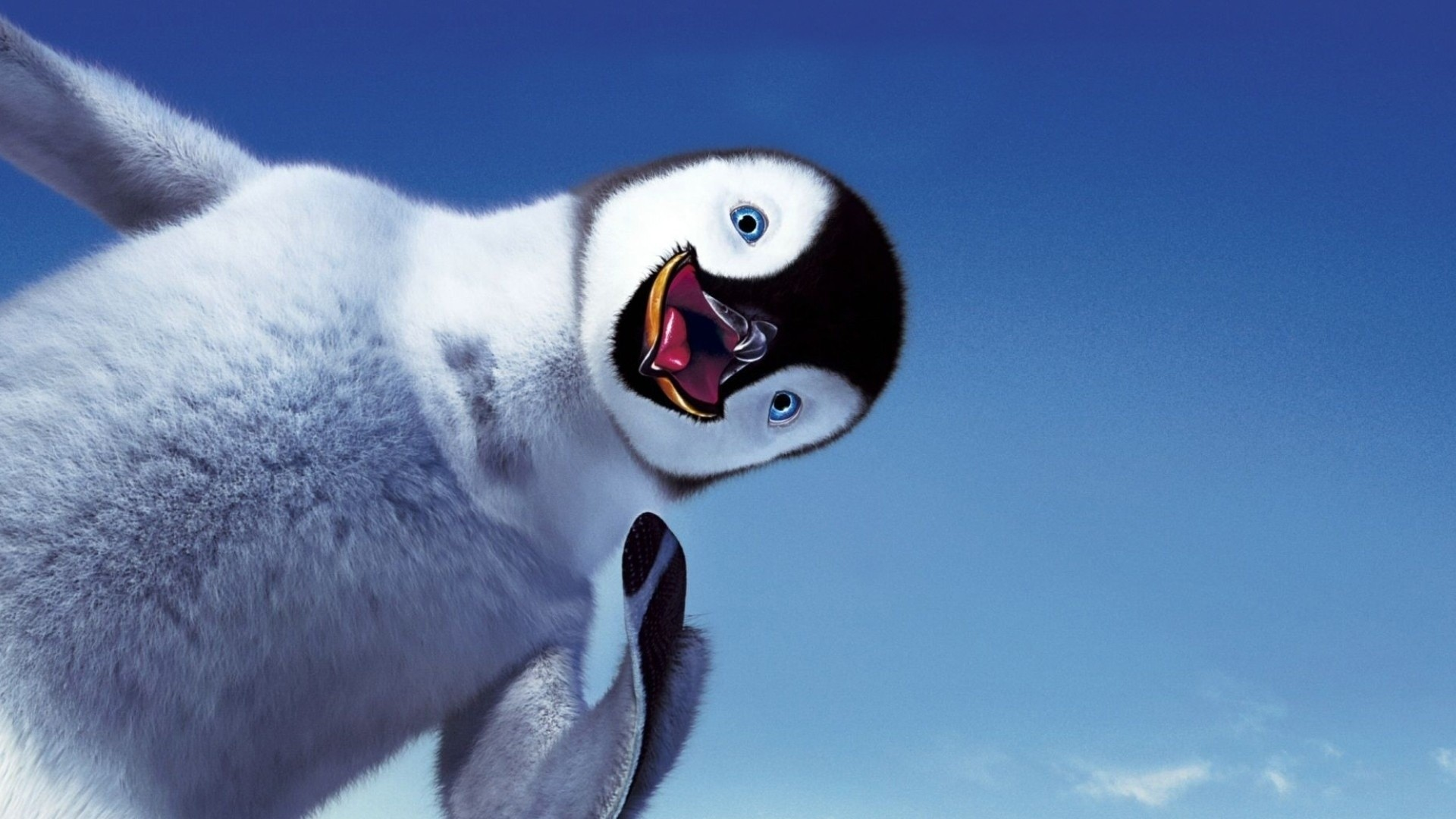 1920x1080 Baby penguin Wallpapers Baby penguin Backgrounds Baby penguin