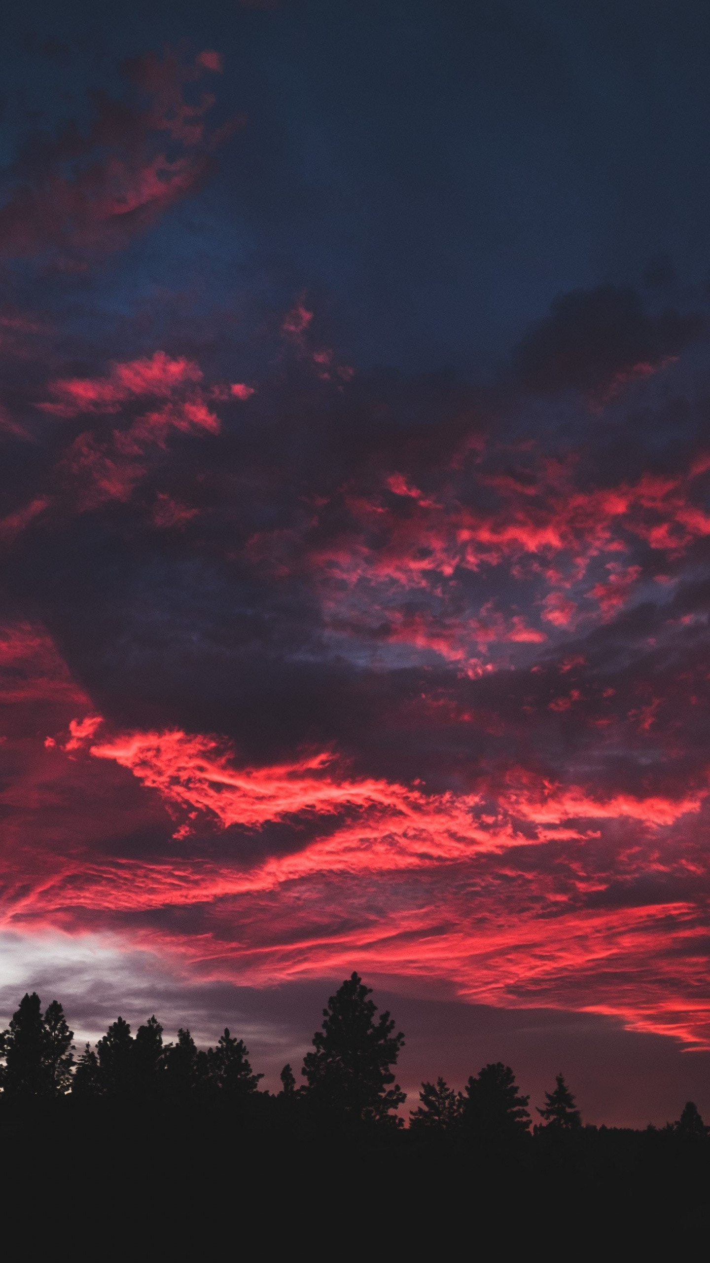 1440x2560 Download  wallpaper colorful, clouds, sunset, dark, tree, qhd  samsung galaxy s6, s7, edge, note, lg g4,  hd image, background,  2386
