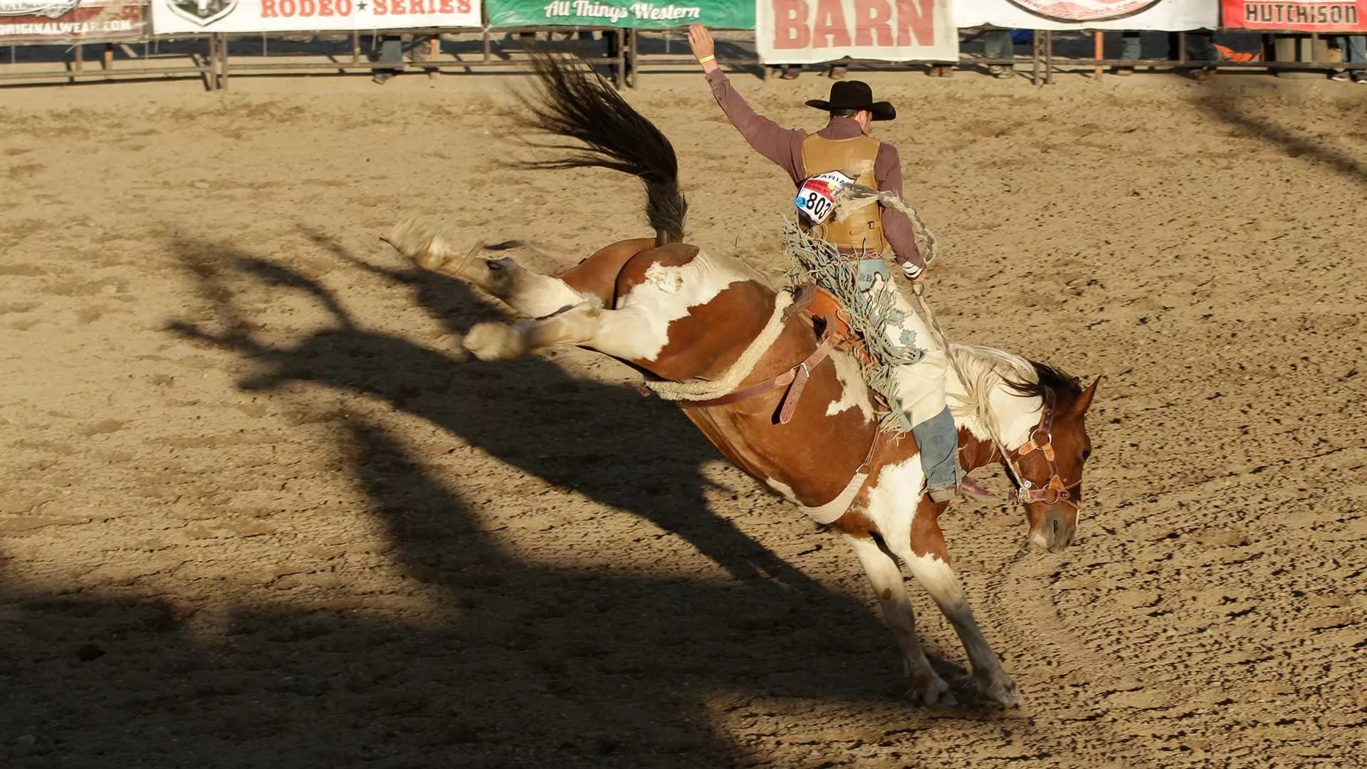 1920x1080 Best images of Rodeo Images of Rodeo ...