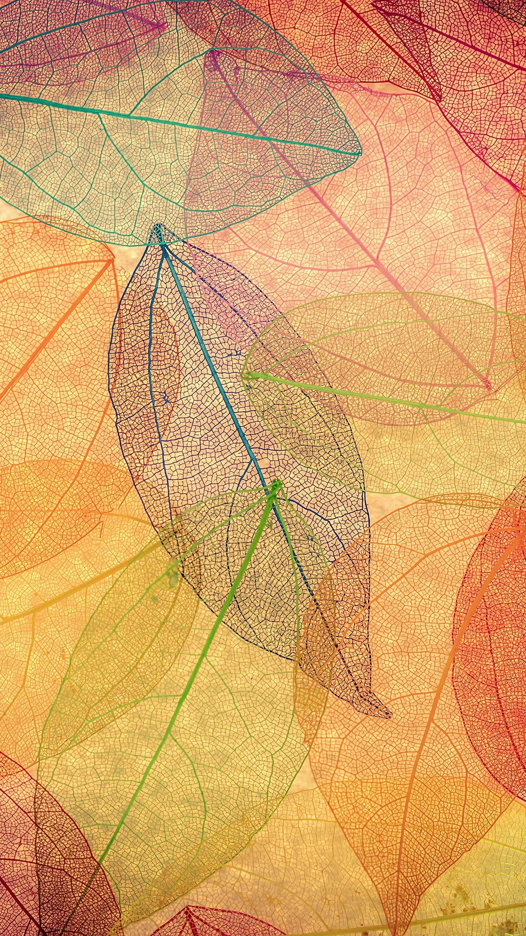 1080x1920 Rainbow Color Leaf Art Fall Nature Pattern iPhone 6 wallpaper