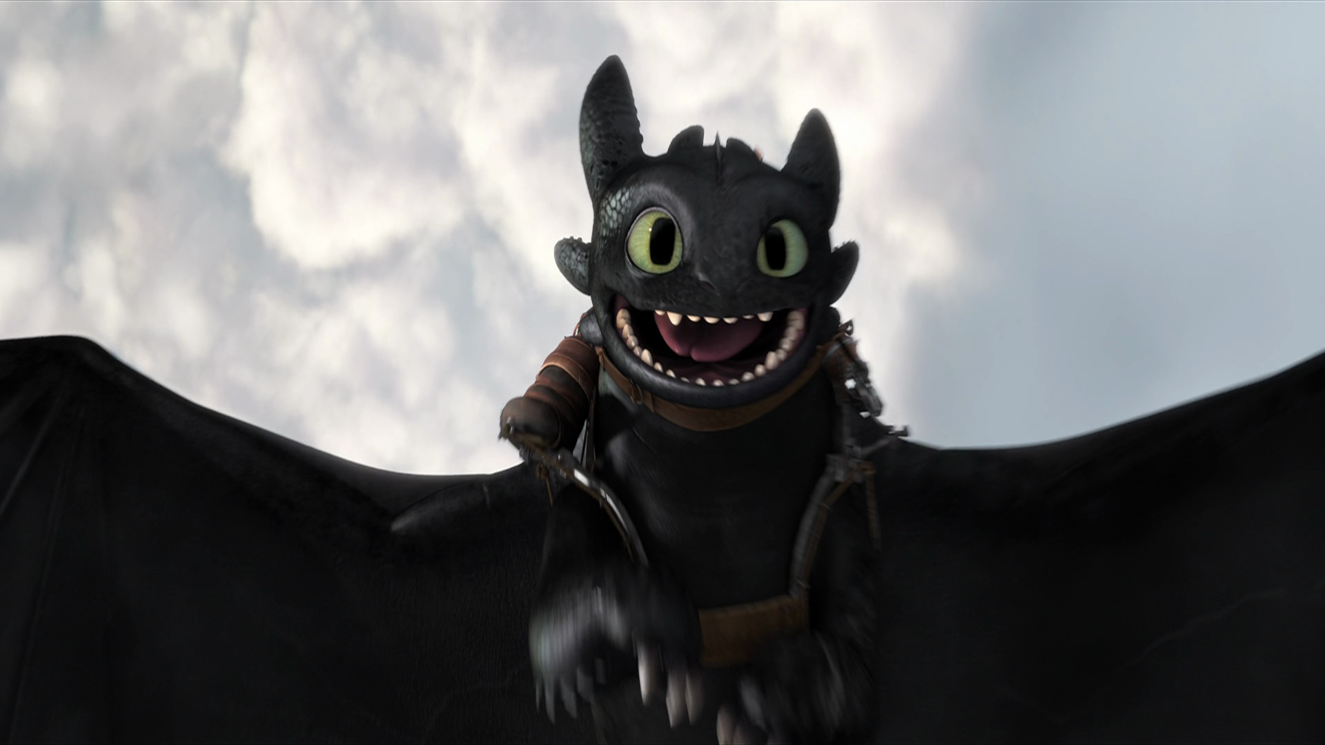 Alpha Toothless Wallpaper 65 Images