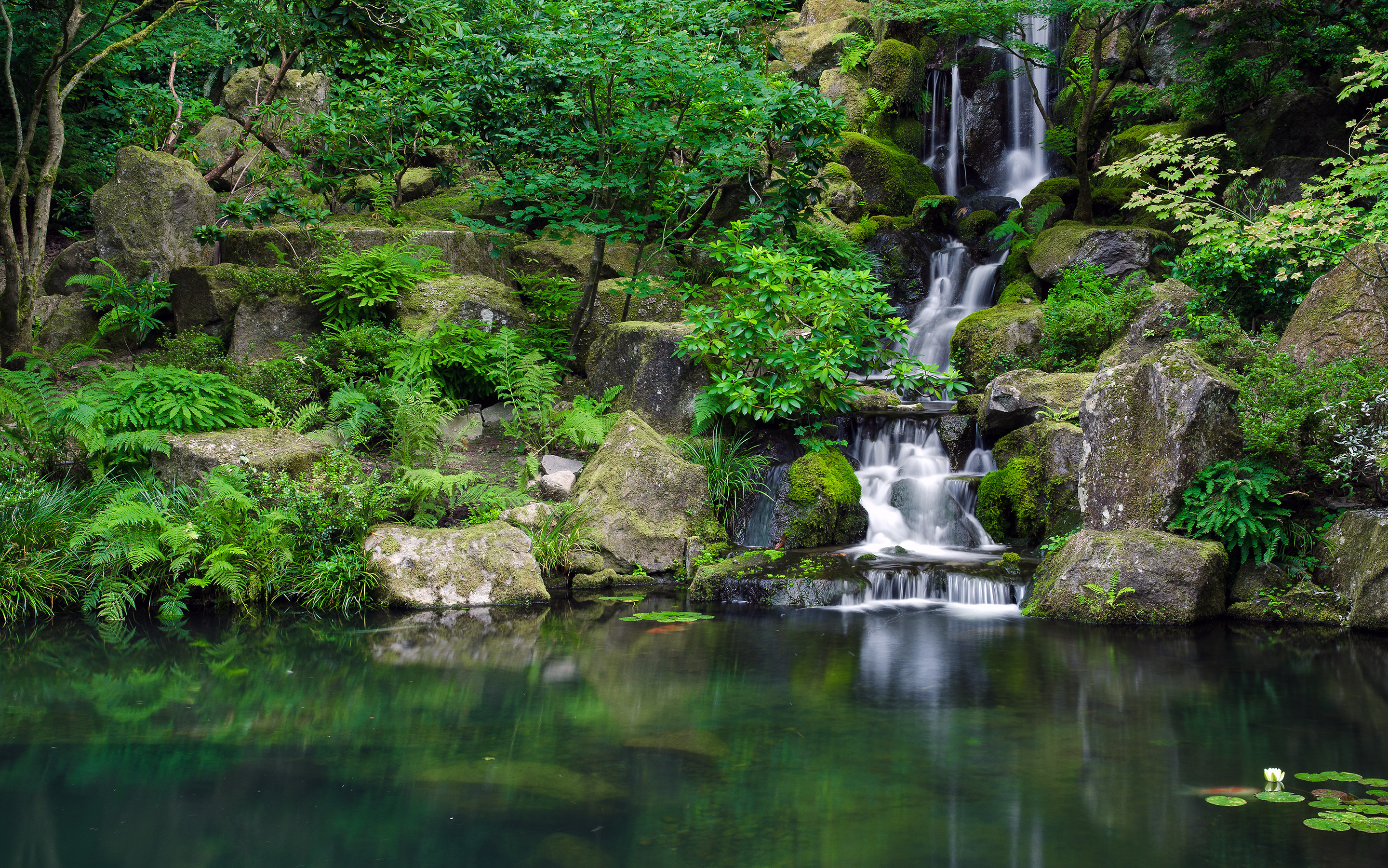 2880x1800 Waterfall Jungle Forest Pond trees reflection wallpaper |  | 45592  | WallpaperUP