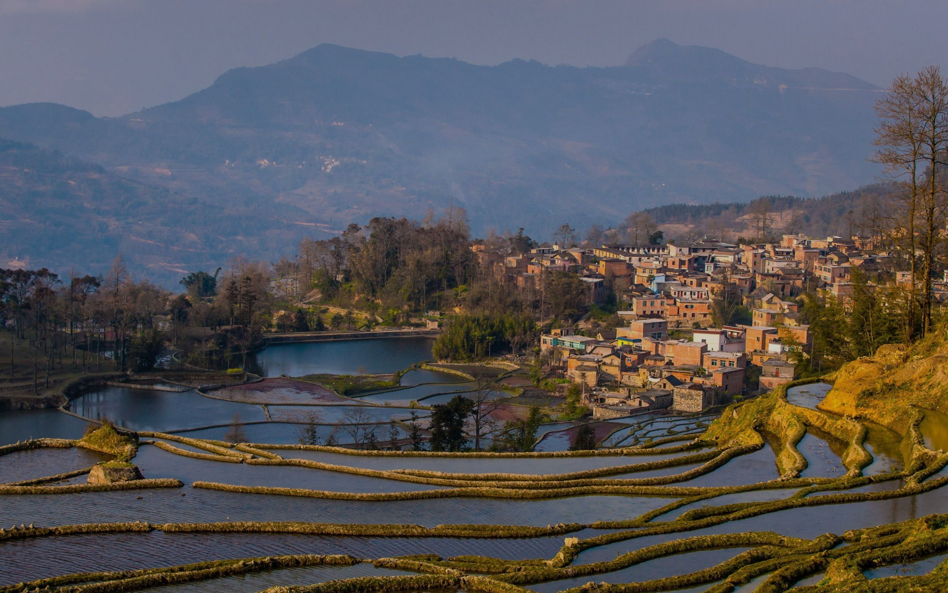 1920x1200 Hani Rice Terraces Vietnam wallpapers and stock photos