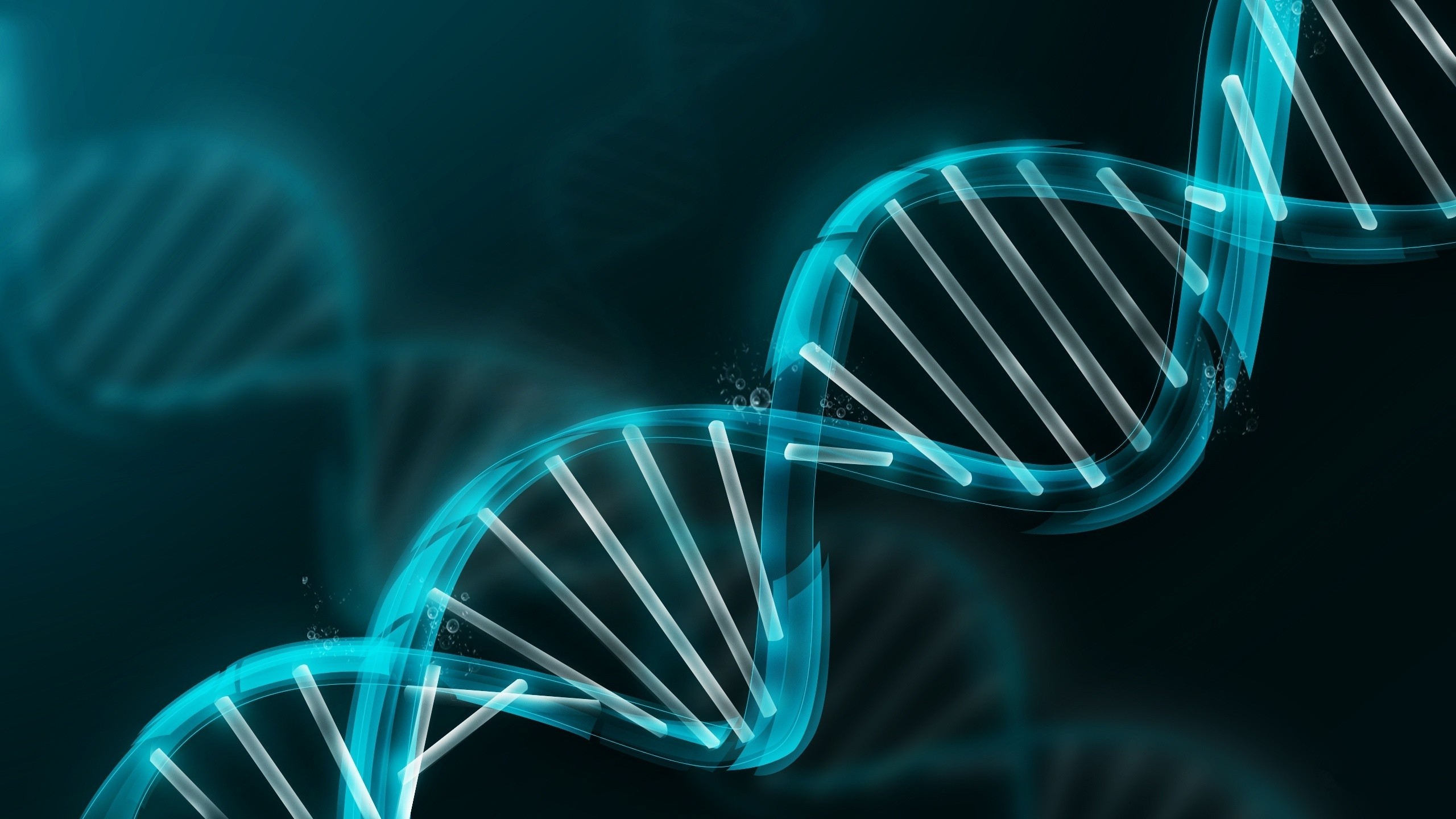 2560x1440 Abstract Molecule DNA Double Helix Wallpapers