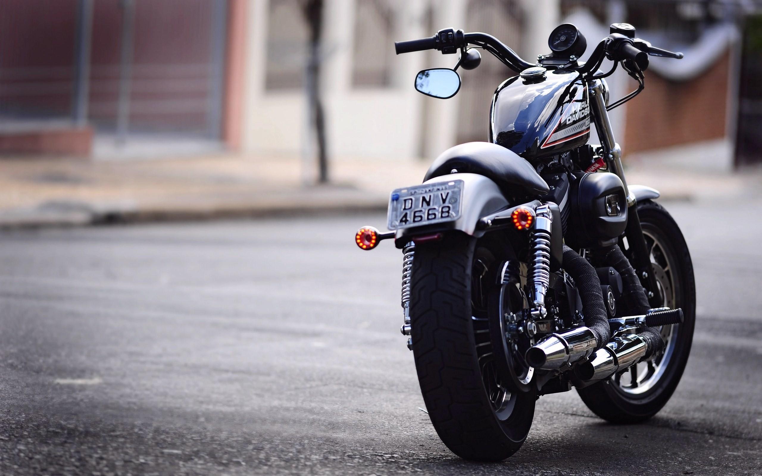Harley Davidson Wallpaper 72 Images