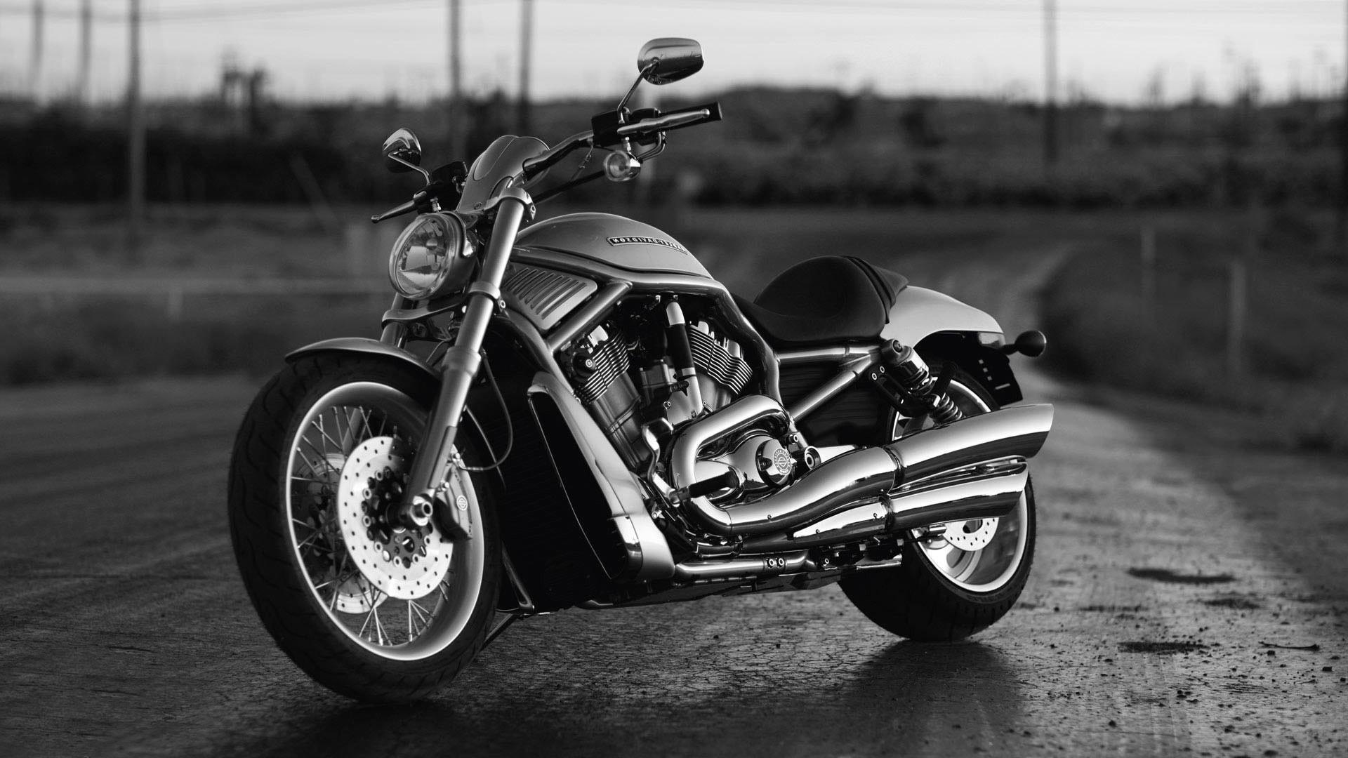 1920x1080 Harley Davidson Desktop Background 2 Hd Wallpapers 4k High Definition Tablet Smart Phones