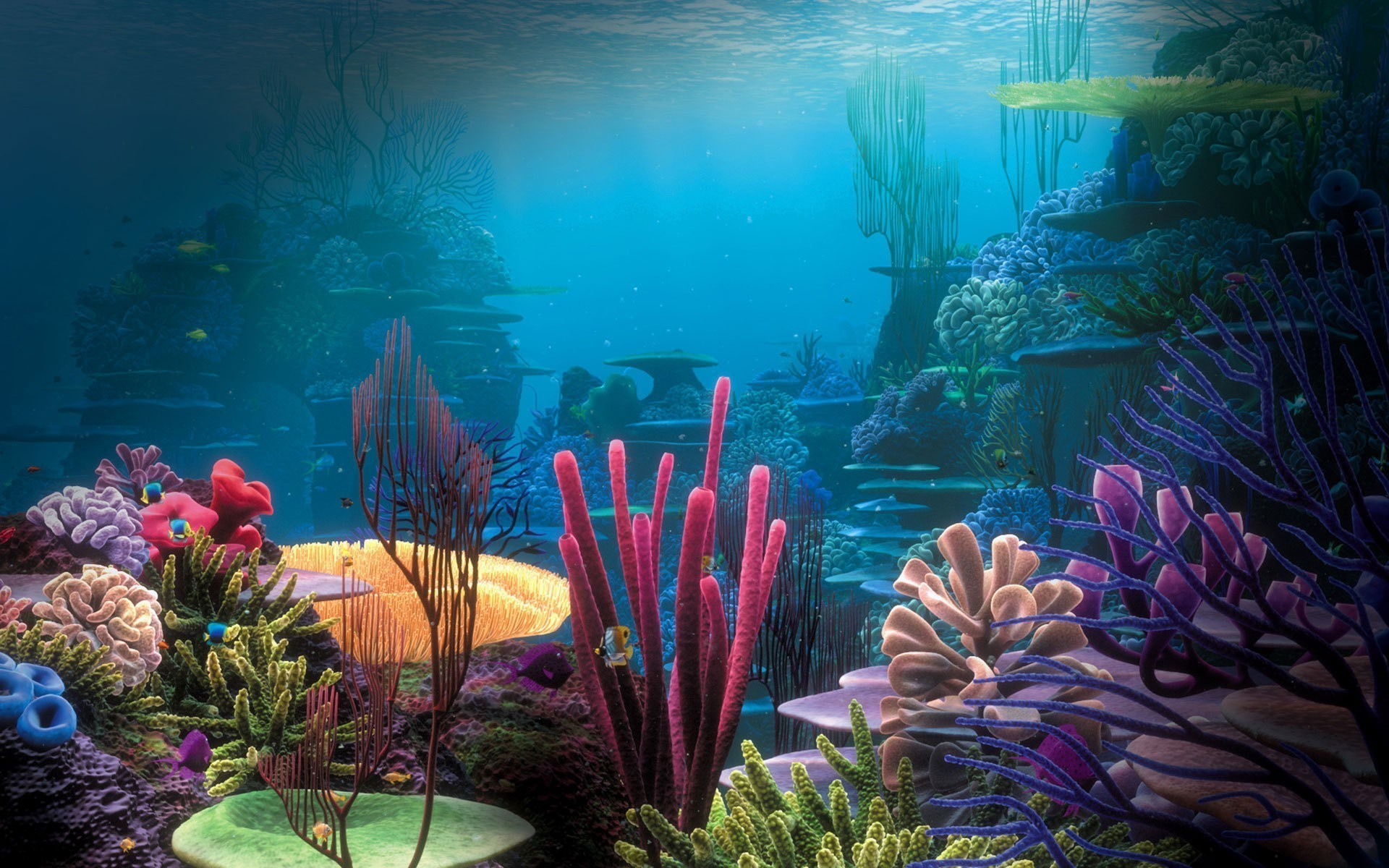 1920x1200 Marine life underwater fish ocean coral water reef sea tropical HD wallpaper.  Android wallpapers for free.