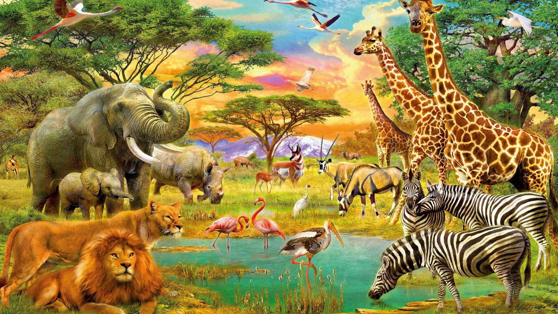 African Animals Wallpaper (61+ images)