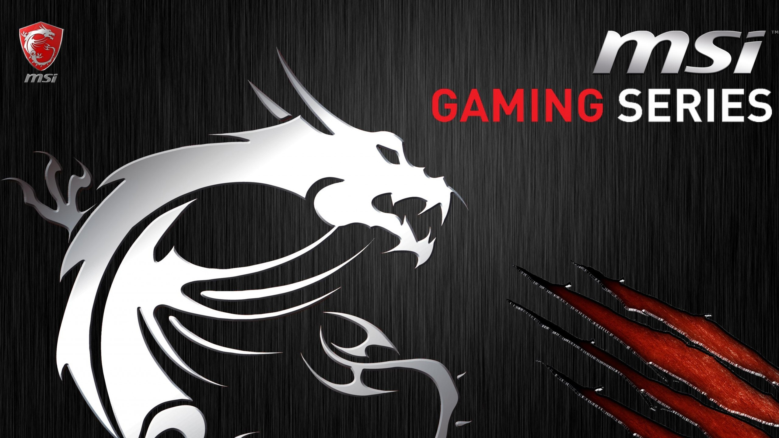 2560x1440 Msi gaming Wallpaper -