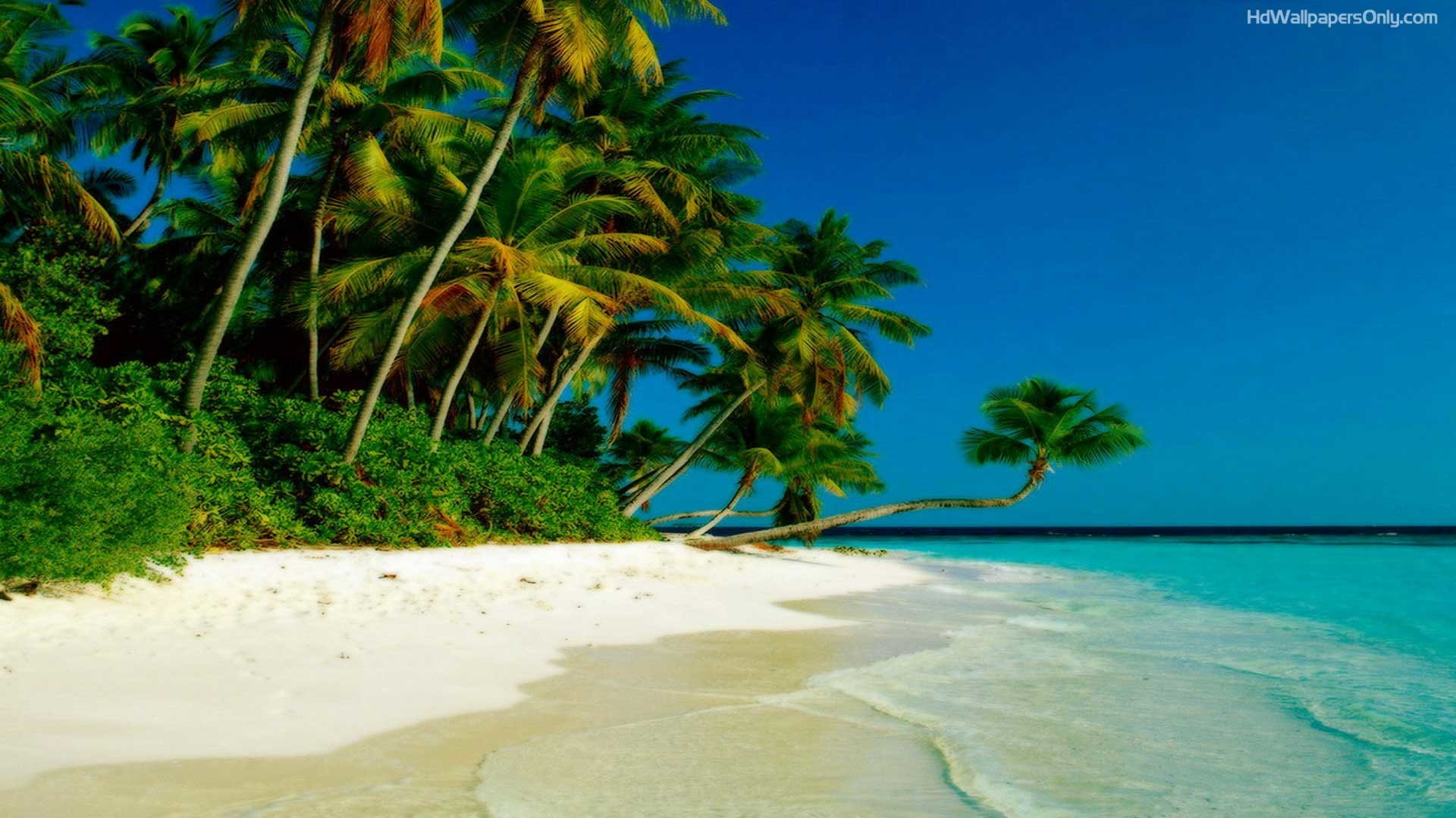 1920x1080 Beaches Islands HD Wallpapers Beach Desktop Backgrounds,Stock 1920×1080  Beach Hd Wallpaper (