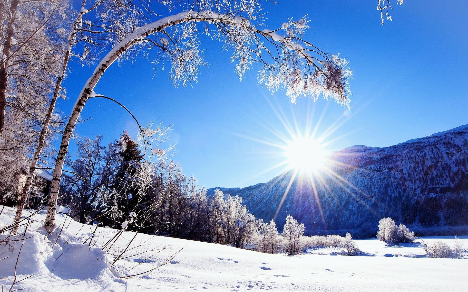 Anime Winter Scenery Wallpaper Stock Images