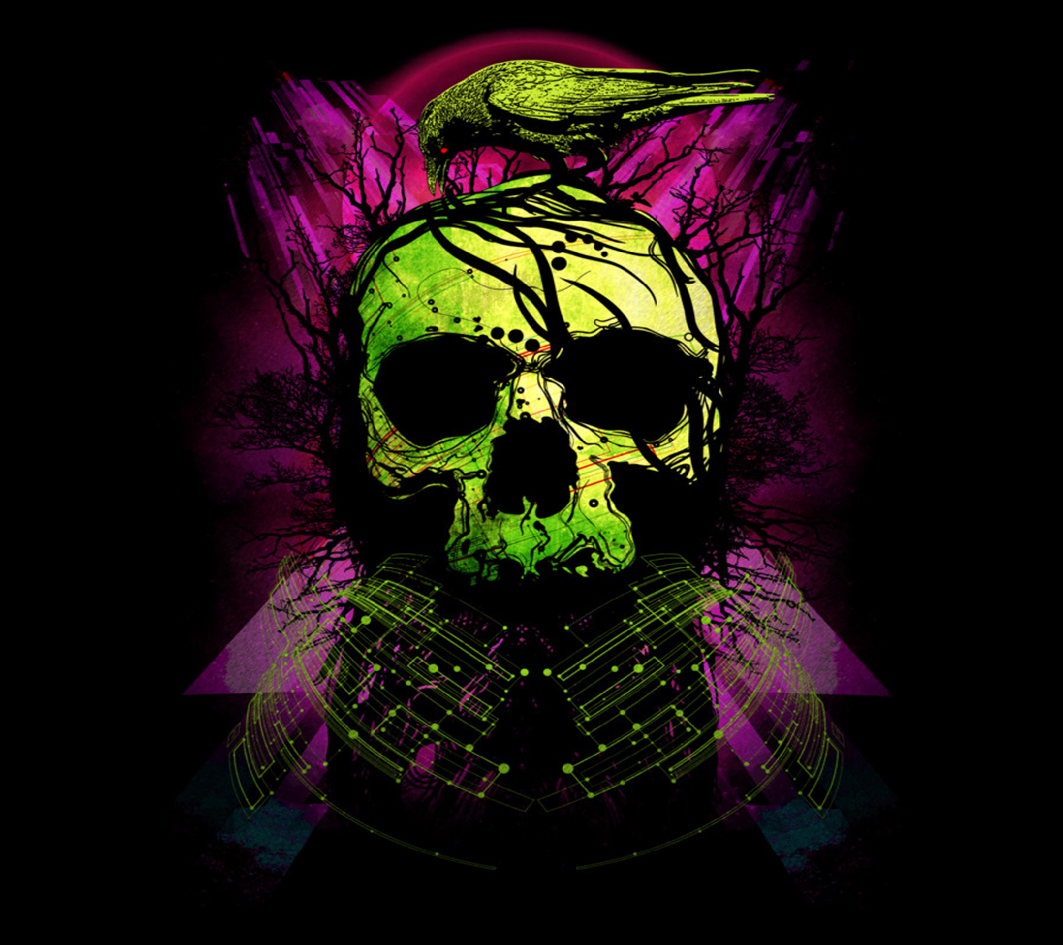 2160x1920 Skull HD Wallpaper | Background Image |  | ID:503640 - Wallpaper  Abyss