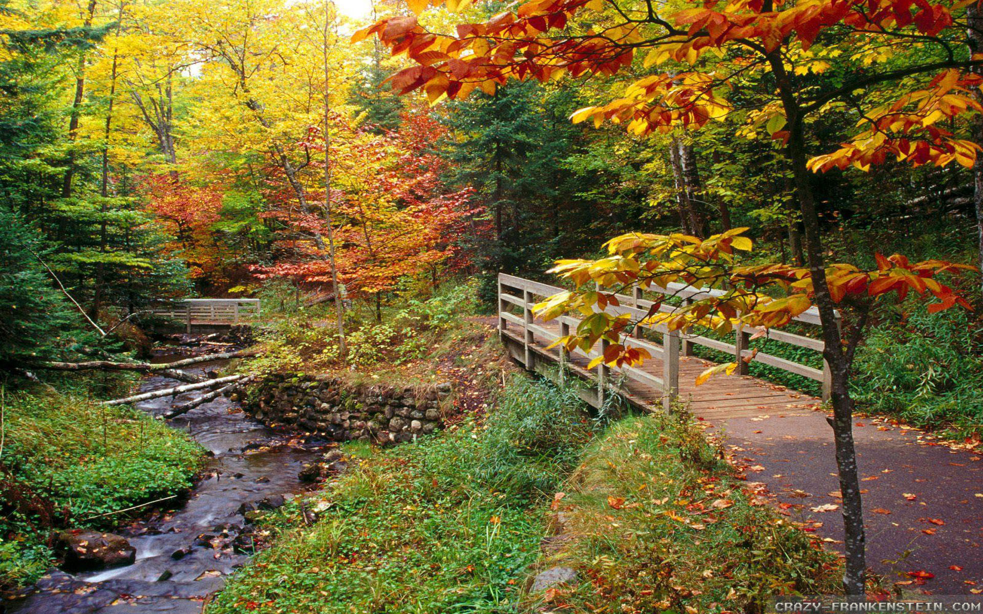 New England Fall Wallpaper 36 Images