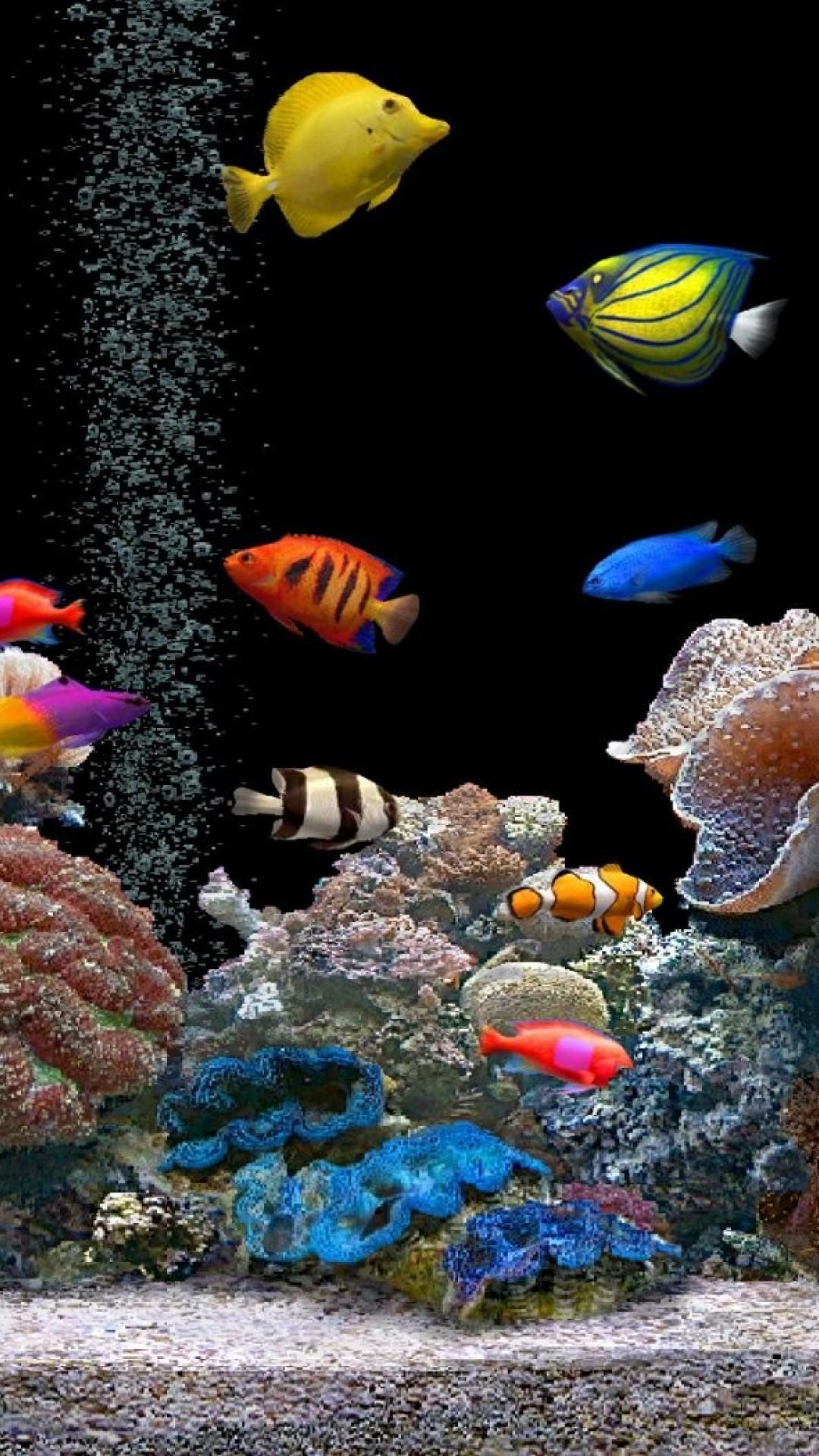 3D Aquarium Wallpaper (52+ images)