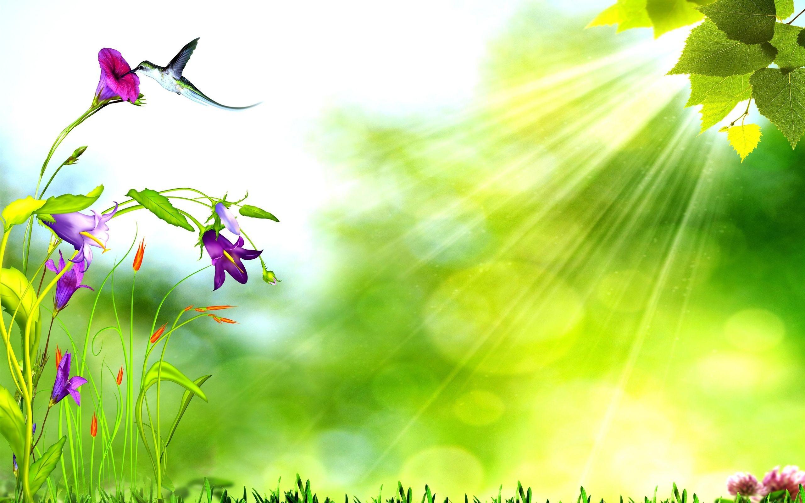 Nature Background Image (57+ images)