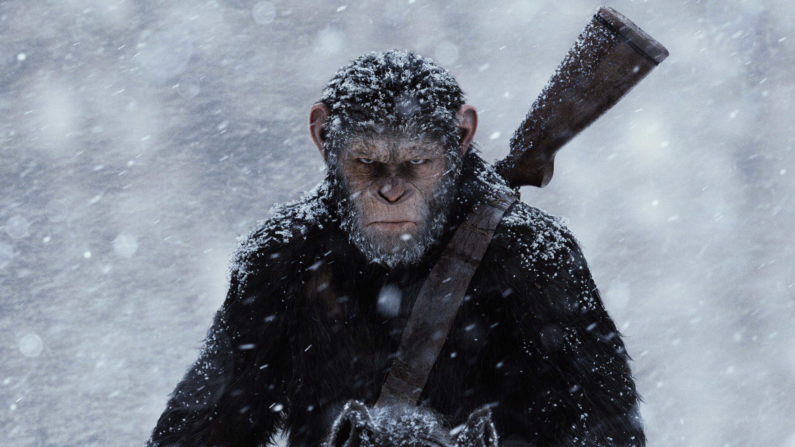 2560x1440 The best wallpapers of 2017 - war for the planet of the apes