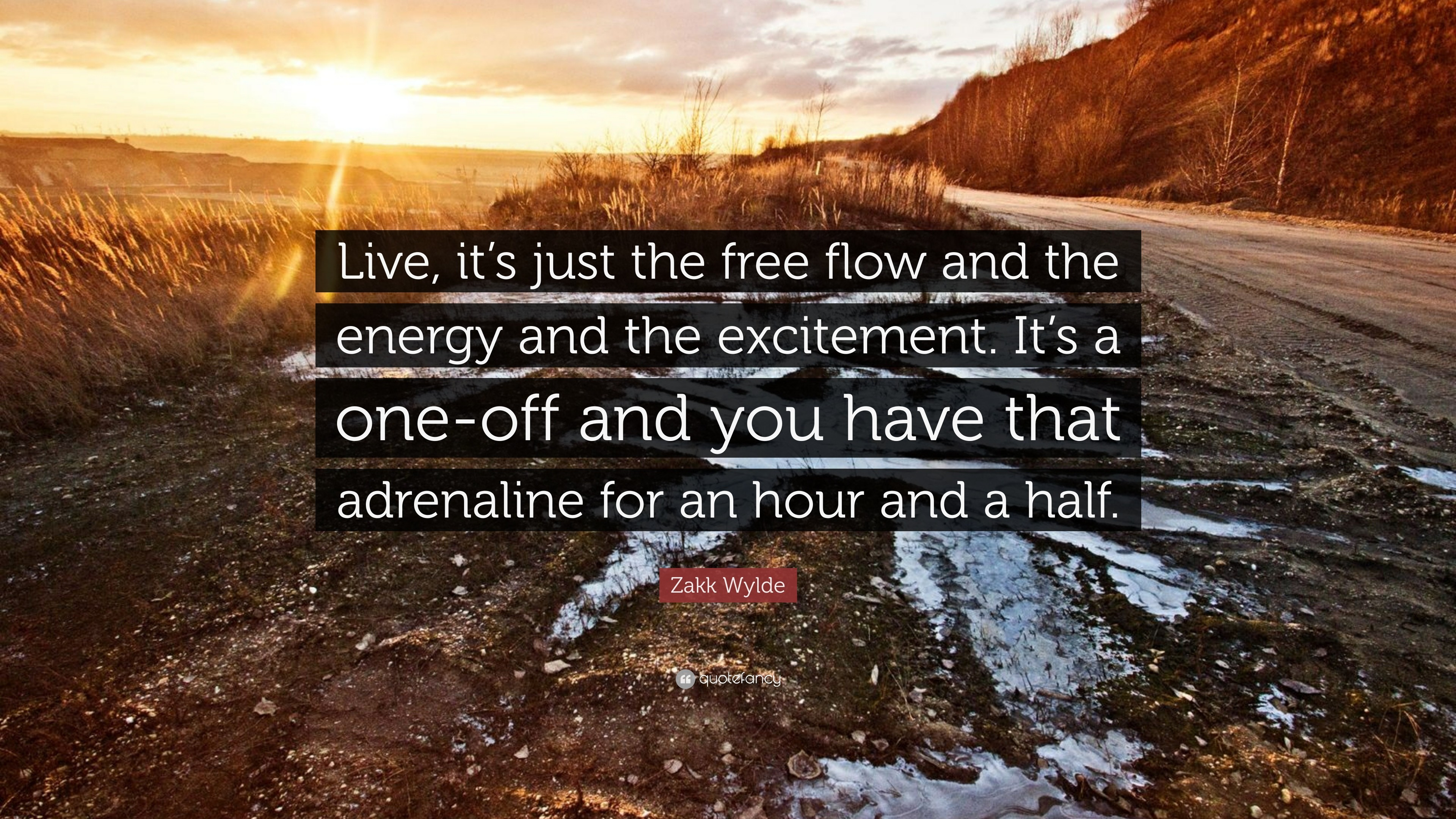 "3840x2160 Zakk Wylde Quote: ""Live, it's just the free flow and the energy and"