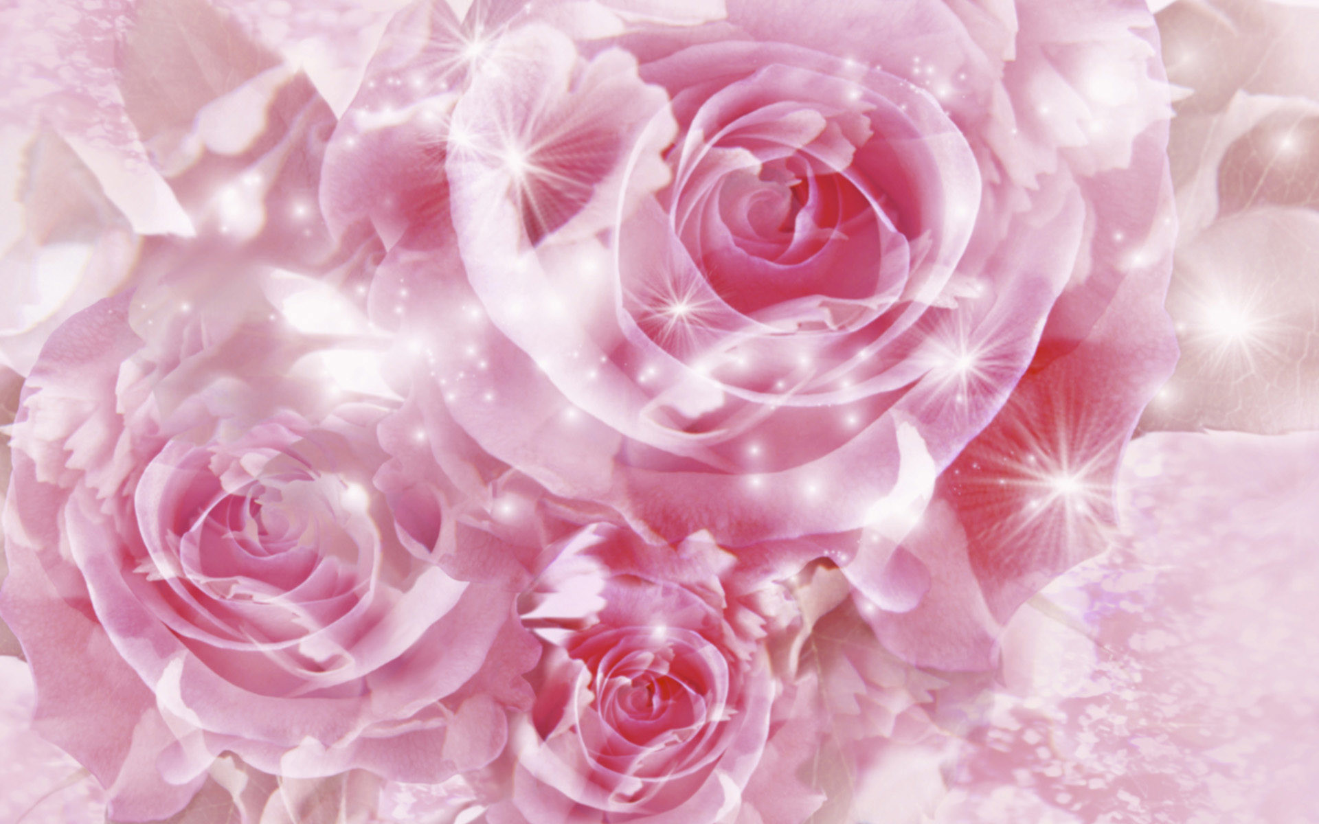 1920x1200 HD Wallpaper and background photos of Pretty Pink Roses Wallpaper for fans  of Pink (Color) images.