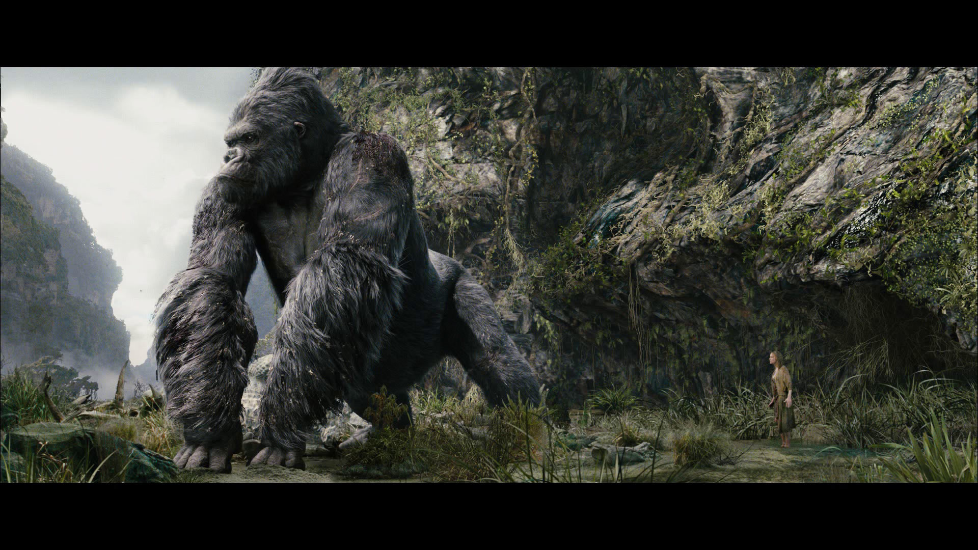 1920x1080 High Quality King Kong Wallpaper Full HD Pictures 1920×1080