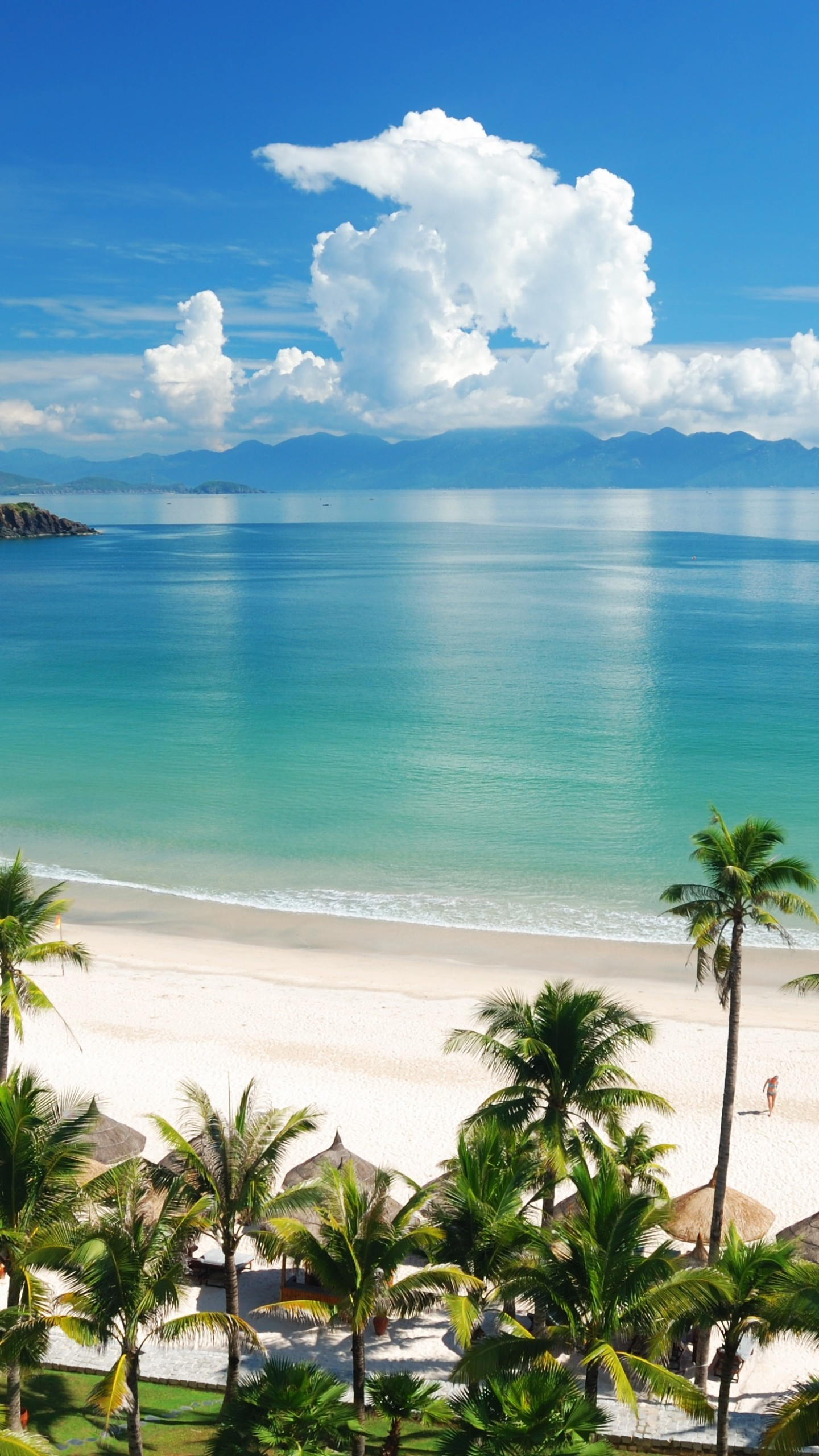 1440x2560 Preview wallpaper beach, tropics, sea, sand, summer