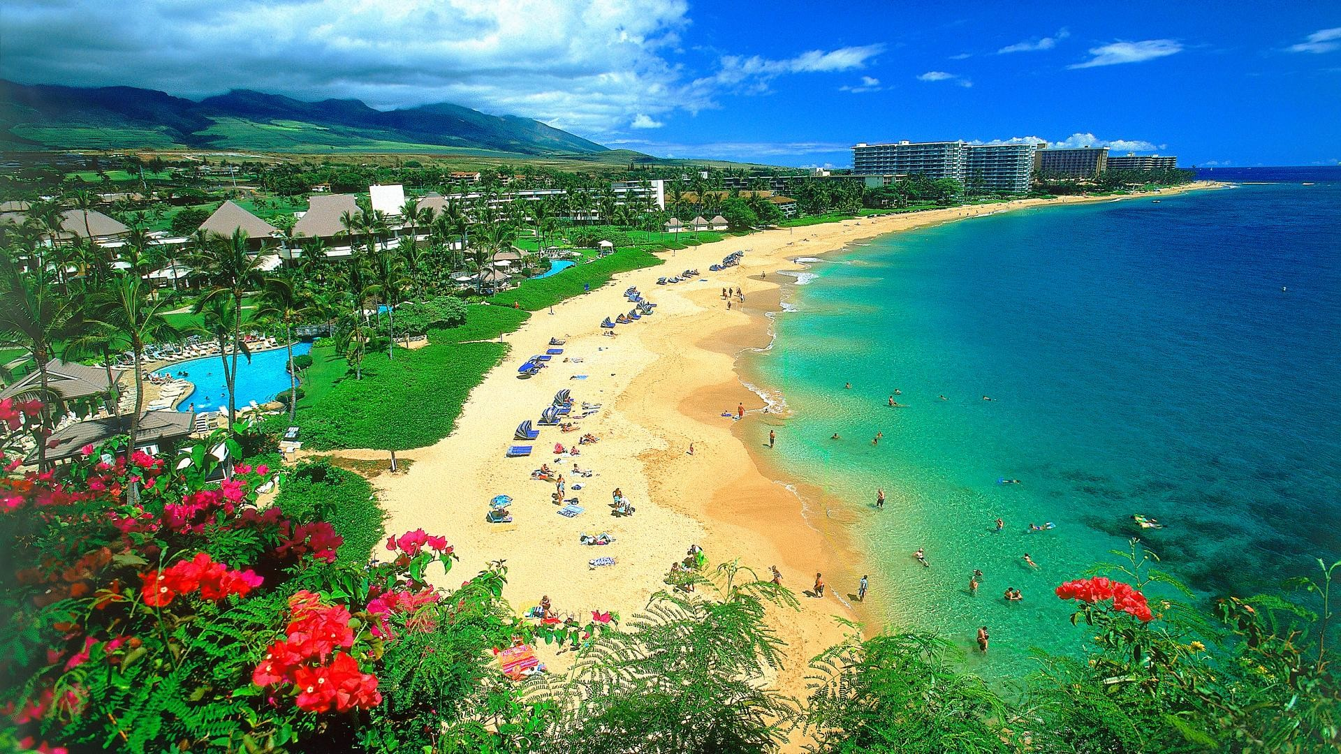 hawaii beach pictures wallpapers (57+ images)