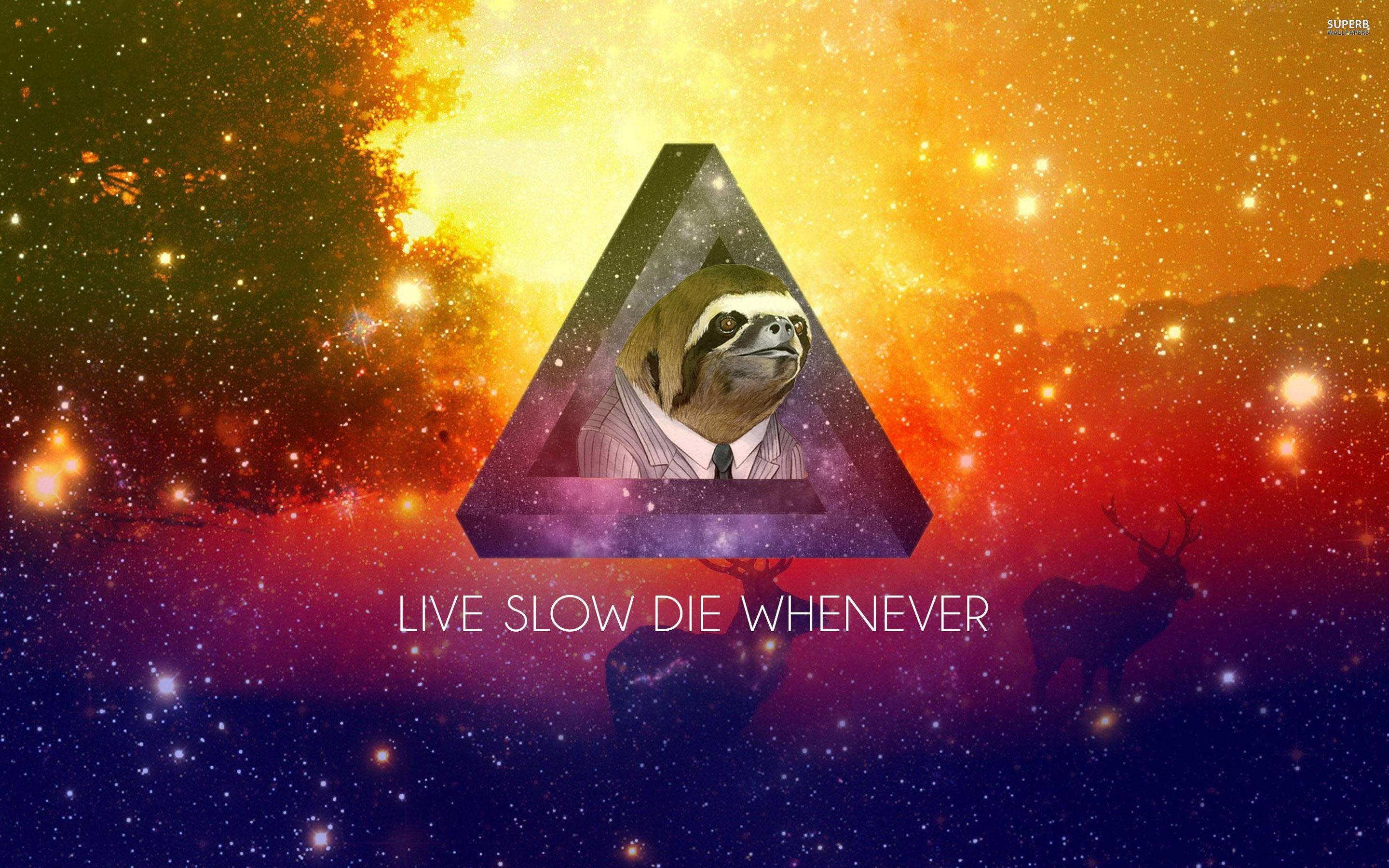 Space sloth wallpaper 76 images - Sloth wallpaper phone ...